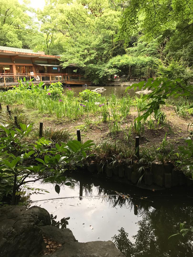 熱田神宮の庭園