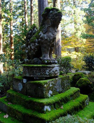 三佛寺の狛犬