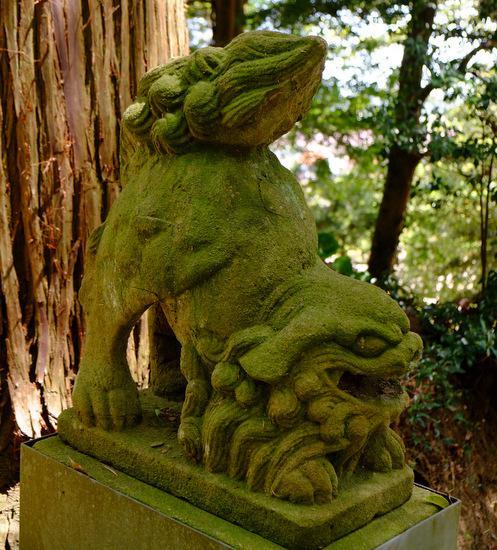 意多伎神社の狛犬