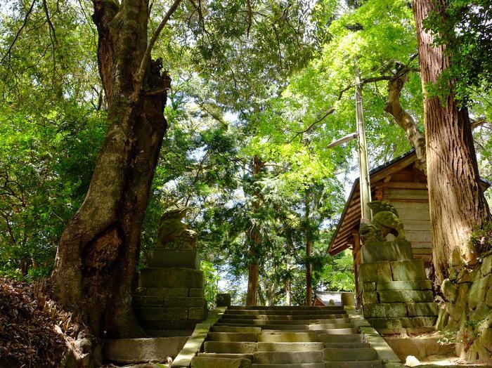 意多伎神社の建物その他