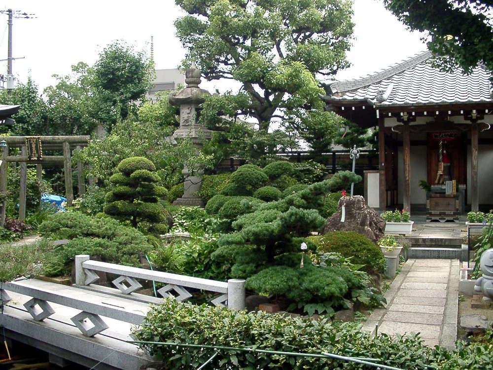 興徳寺の庭園