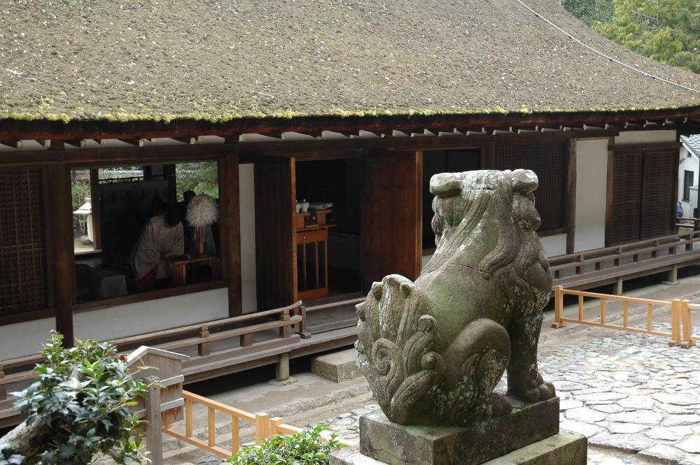 宇治上神社の狛犬