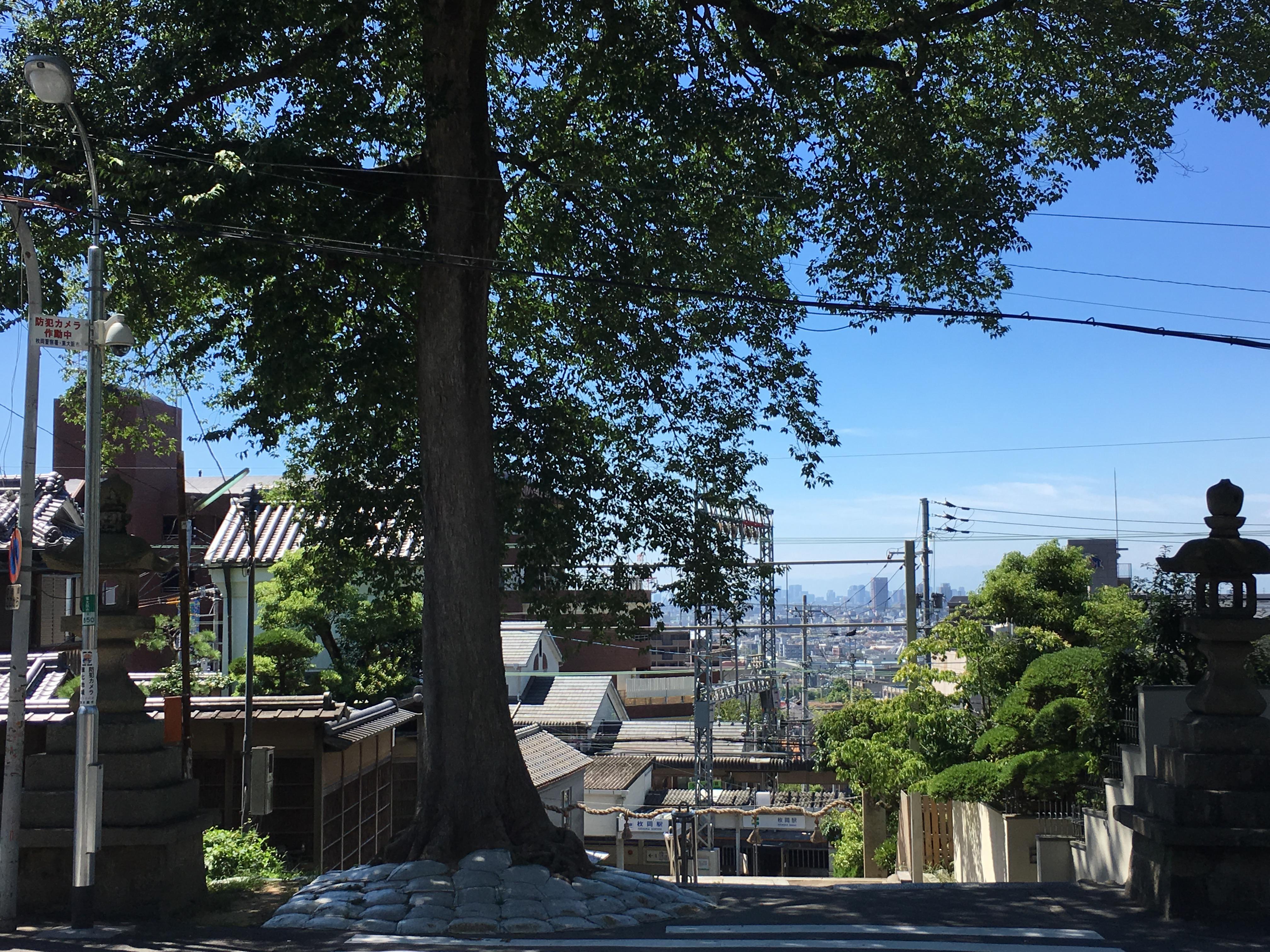 枚岡神社の景色