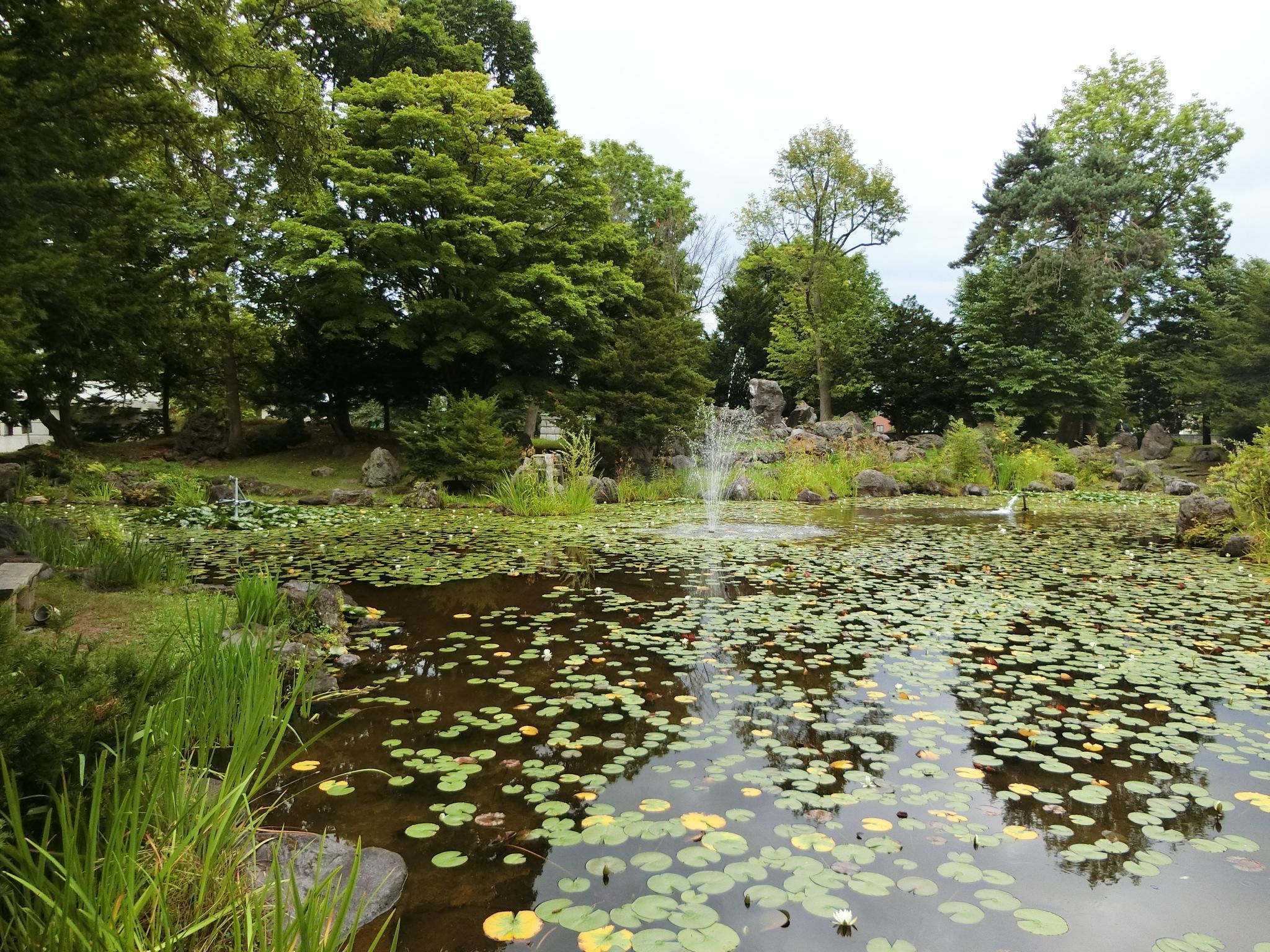 北海道護国神社の庭園