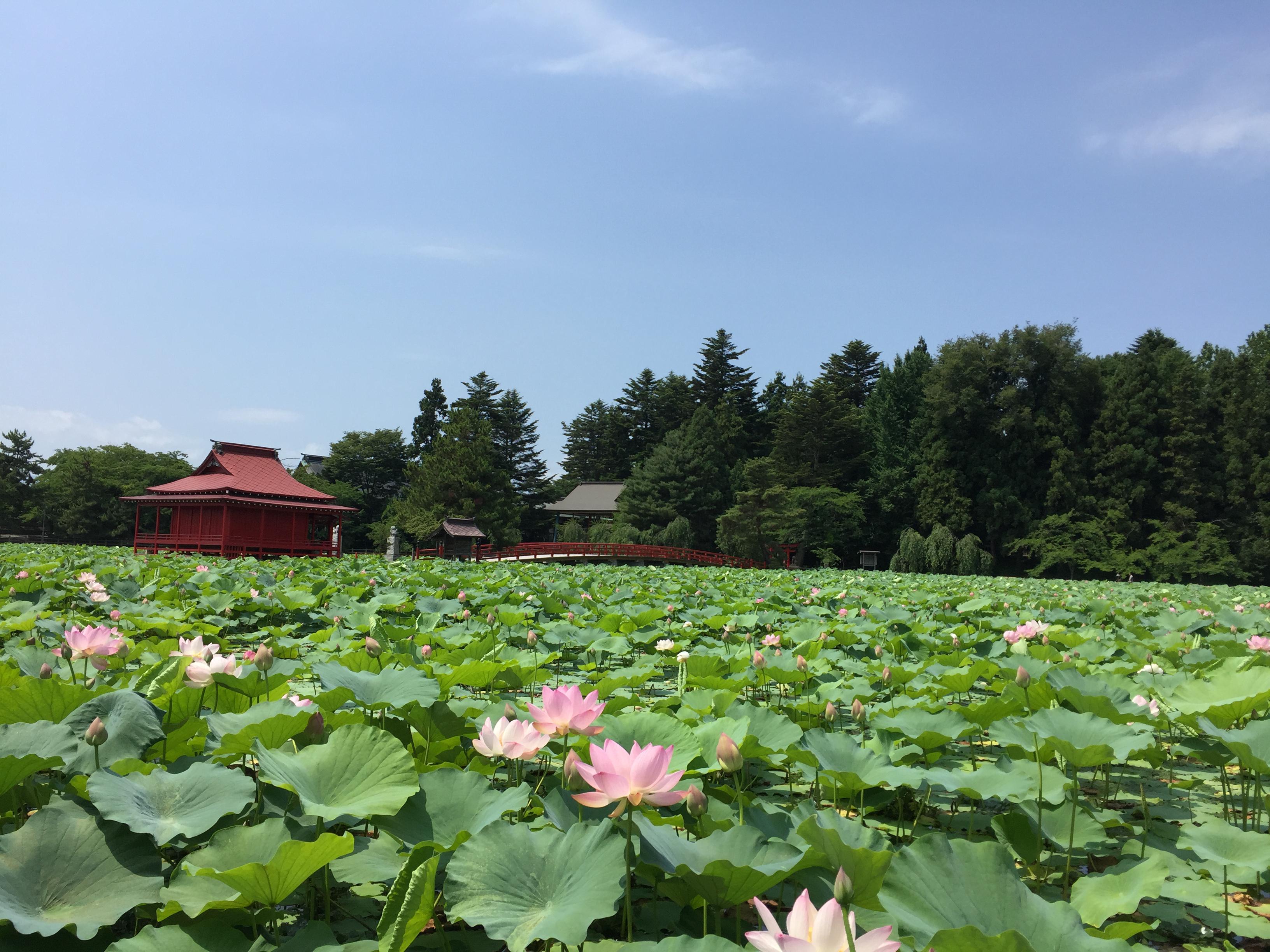 猿賀神社の境内・文化財