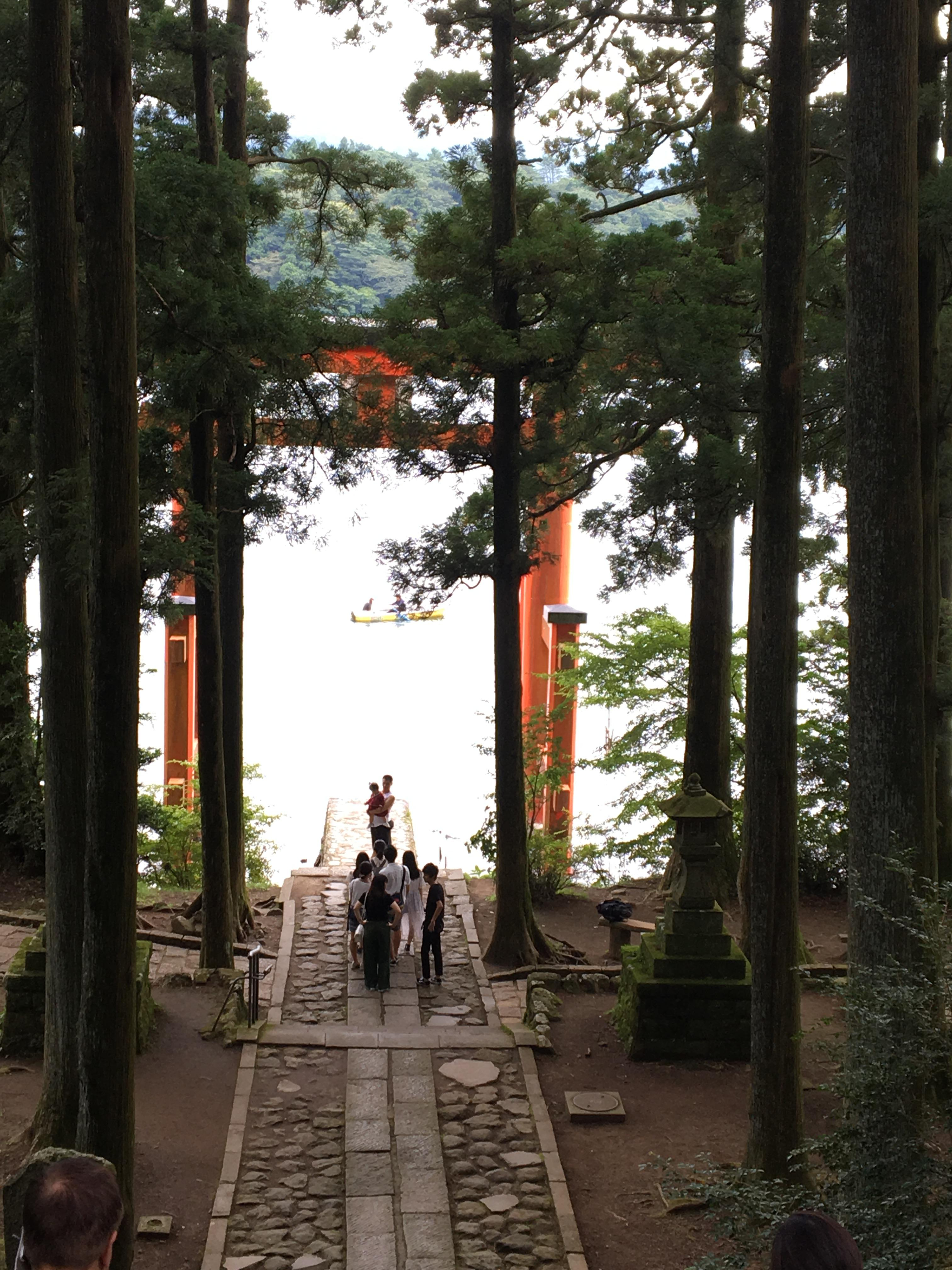 箱根神社の自然