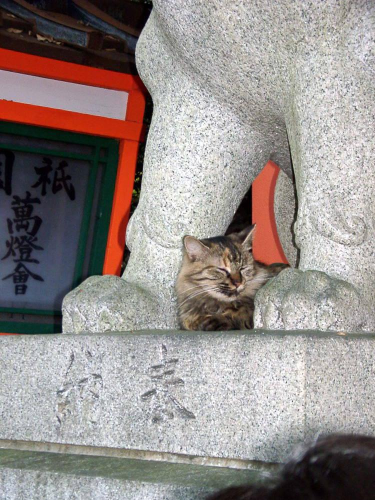 八坂神社(祇園さん)の動物