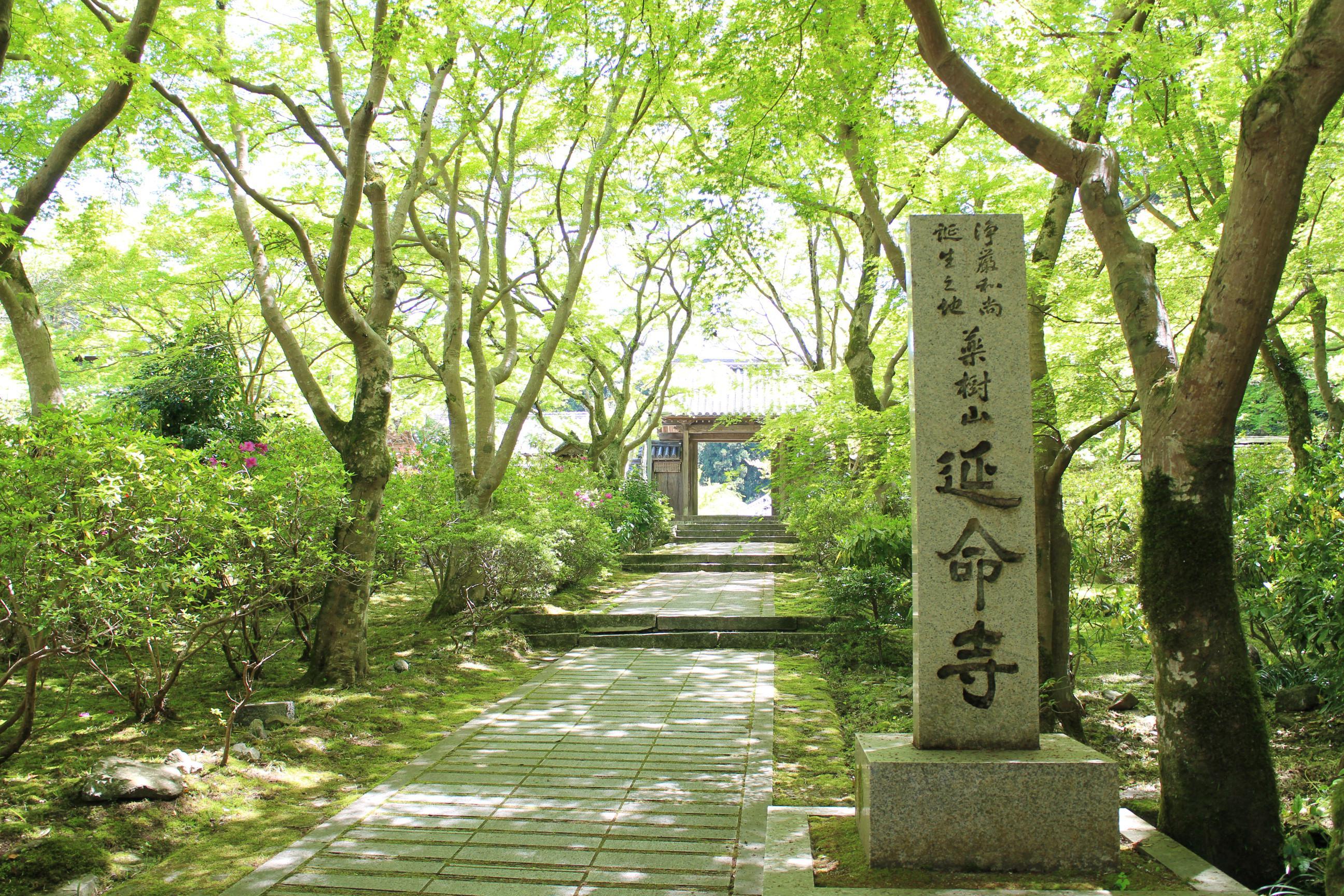 延命寺の自然