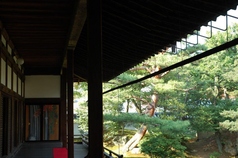 相国寺の庭園(京都府今出川駅)