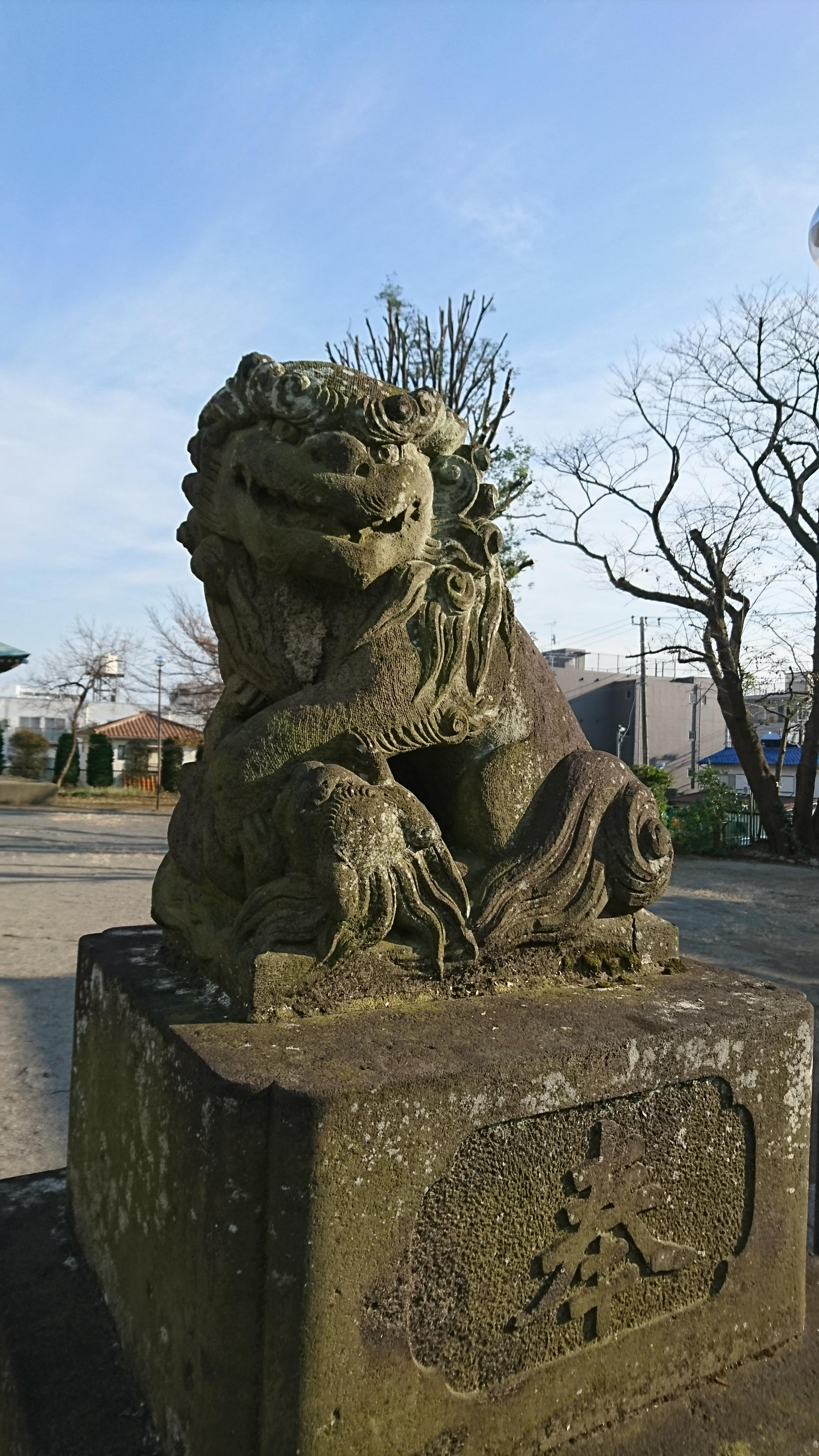谷原氷川神社の狛犬