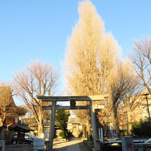 上田端八幡神社の建物その他