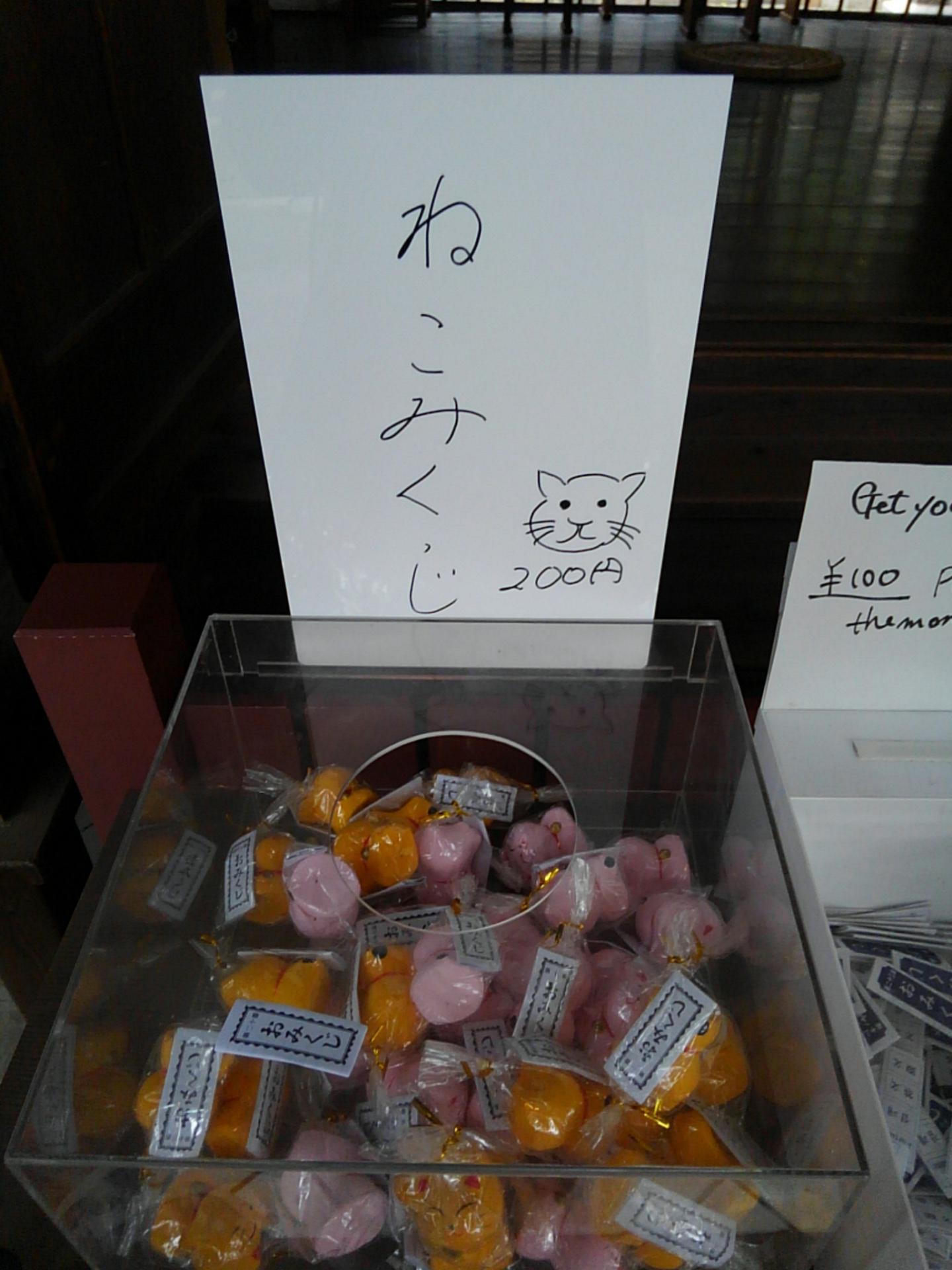 安居神社のおみくじ