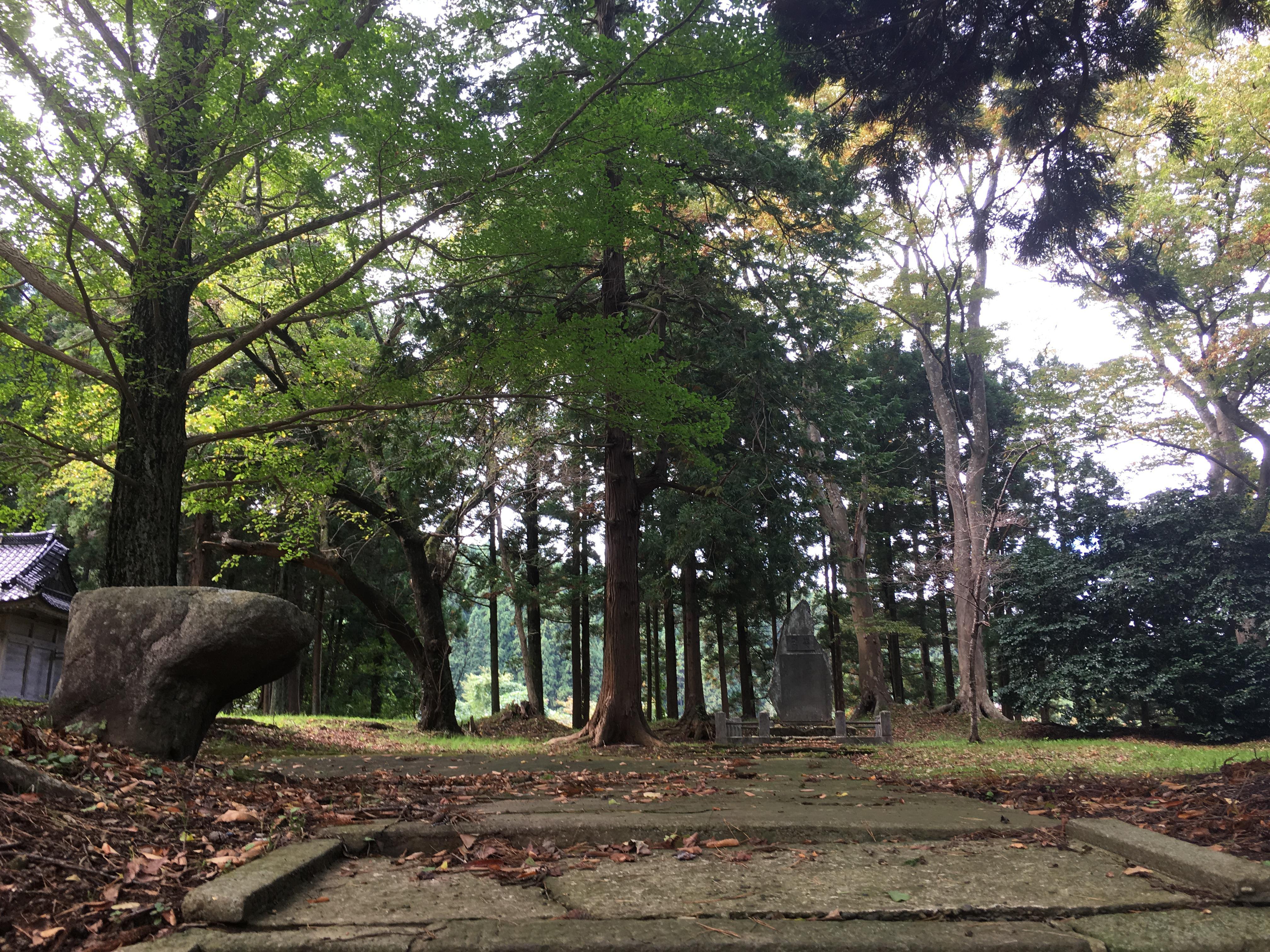 天鷺神社の自然