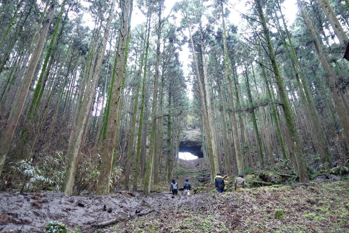 上色見熊野座神社の自然