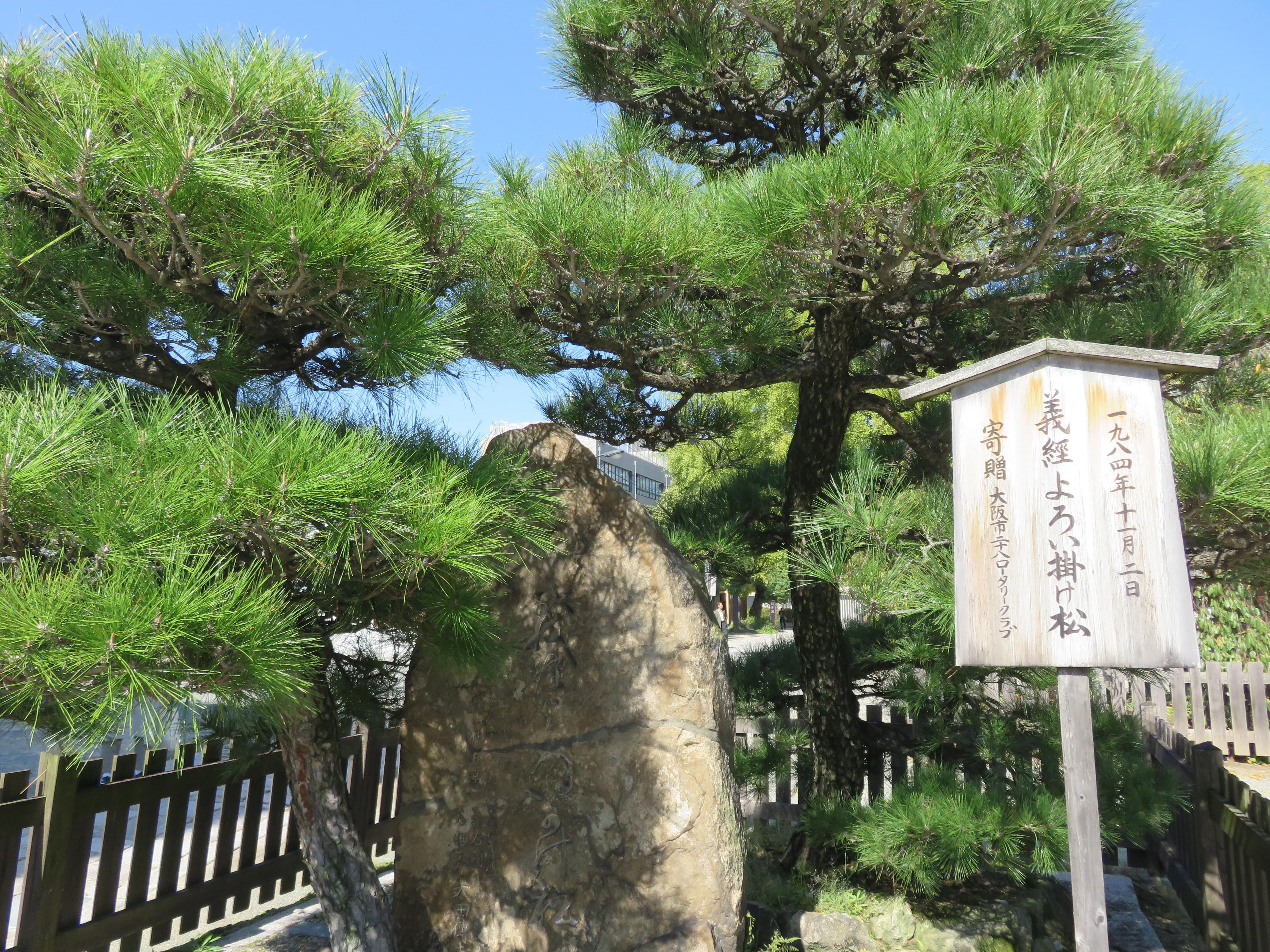 四天王寺の自然