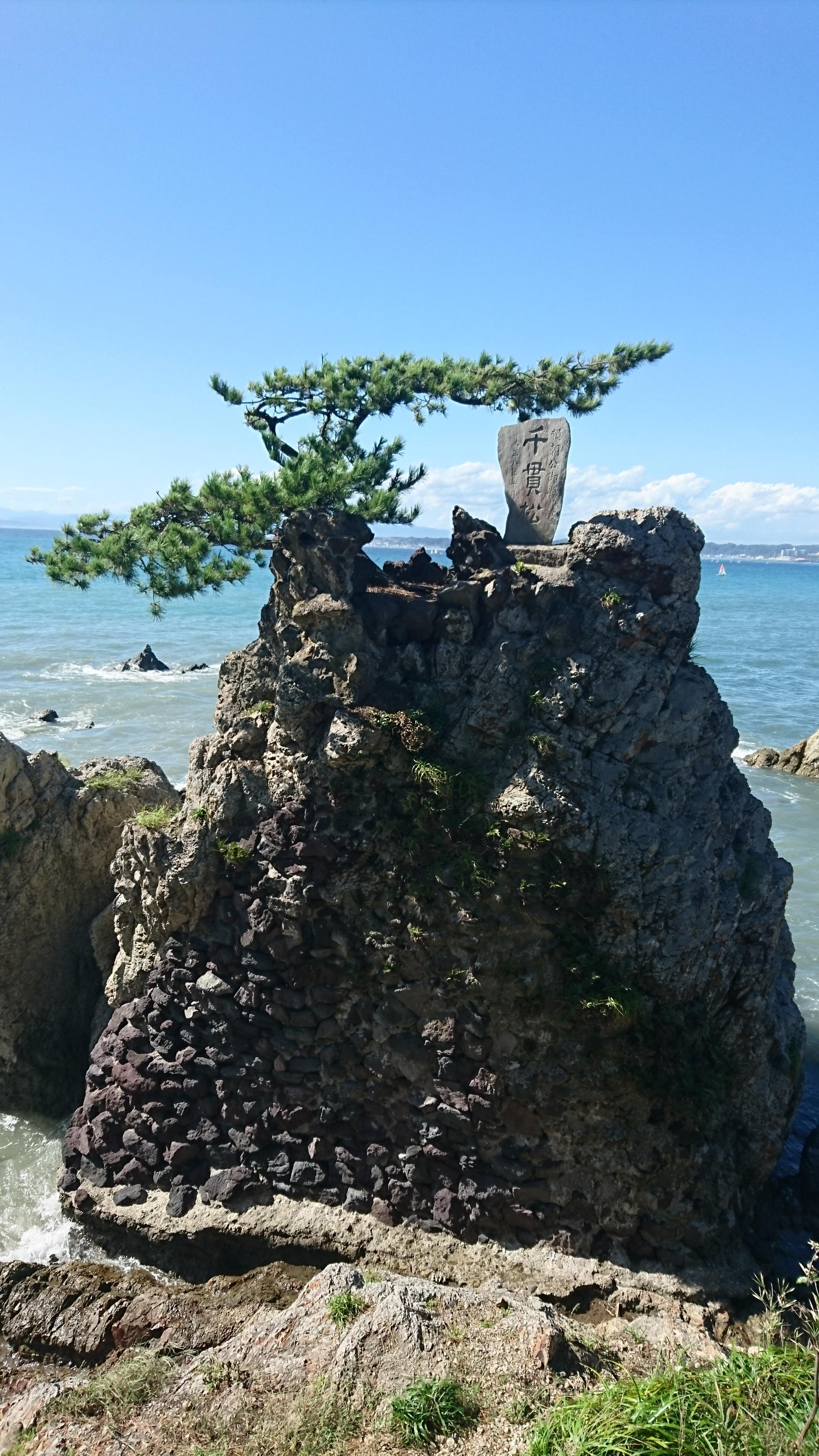 森戸大明神(森戸神社)の自然