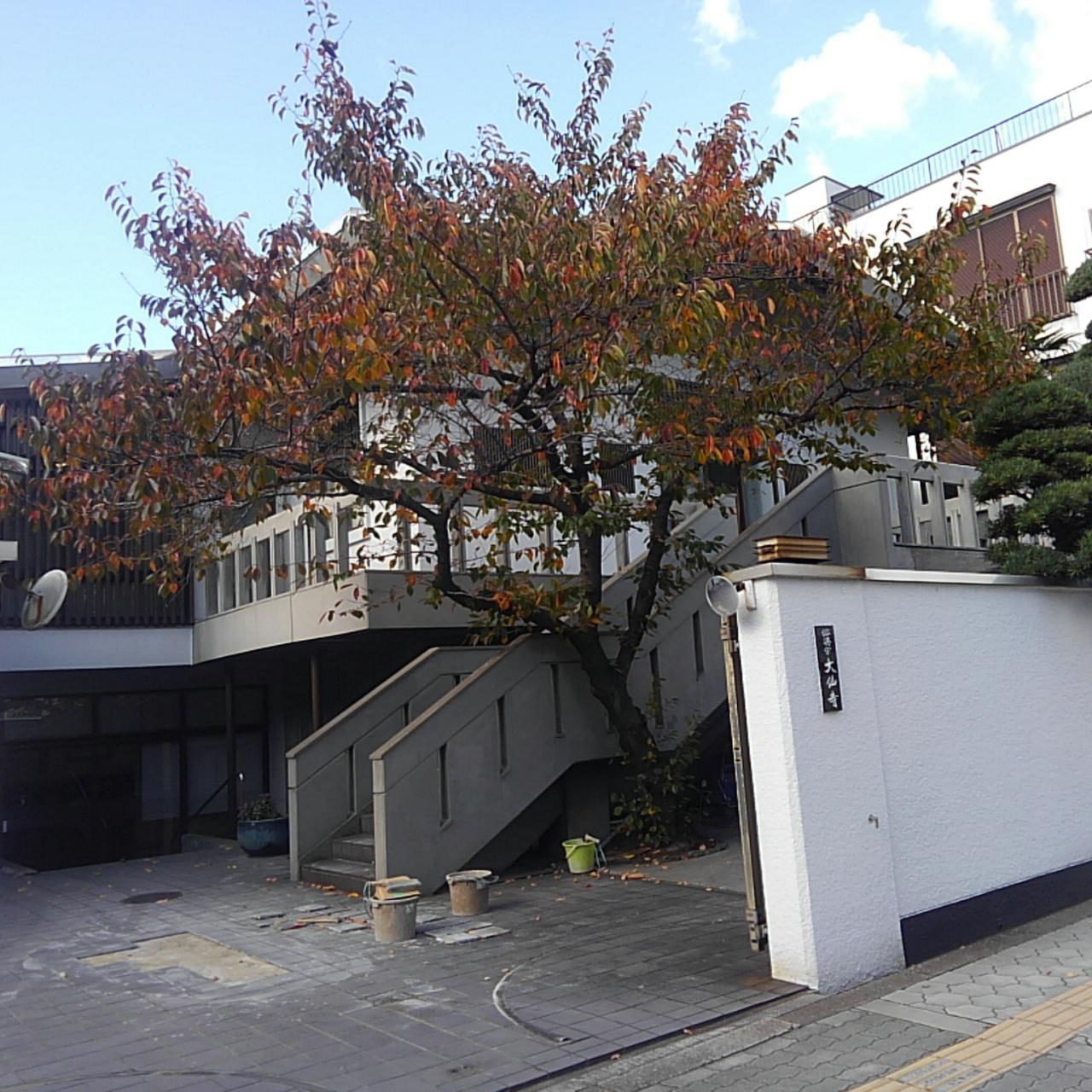 大仙寺の建物その他