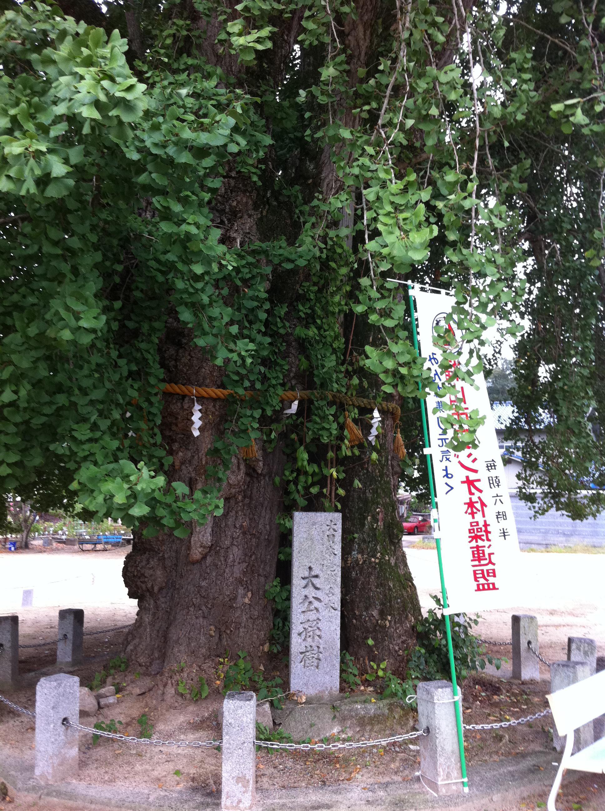 吉備津神社の自然
