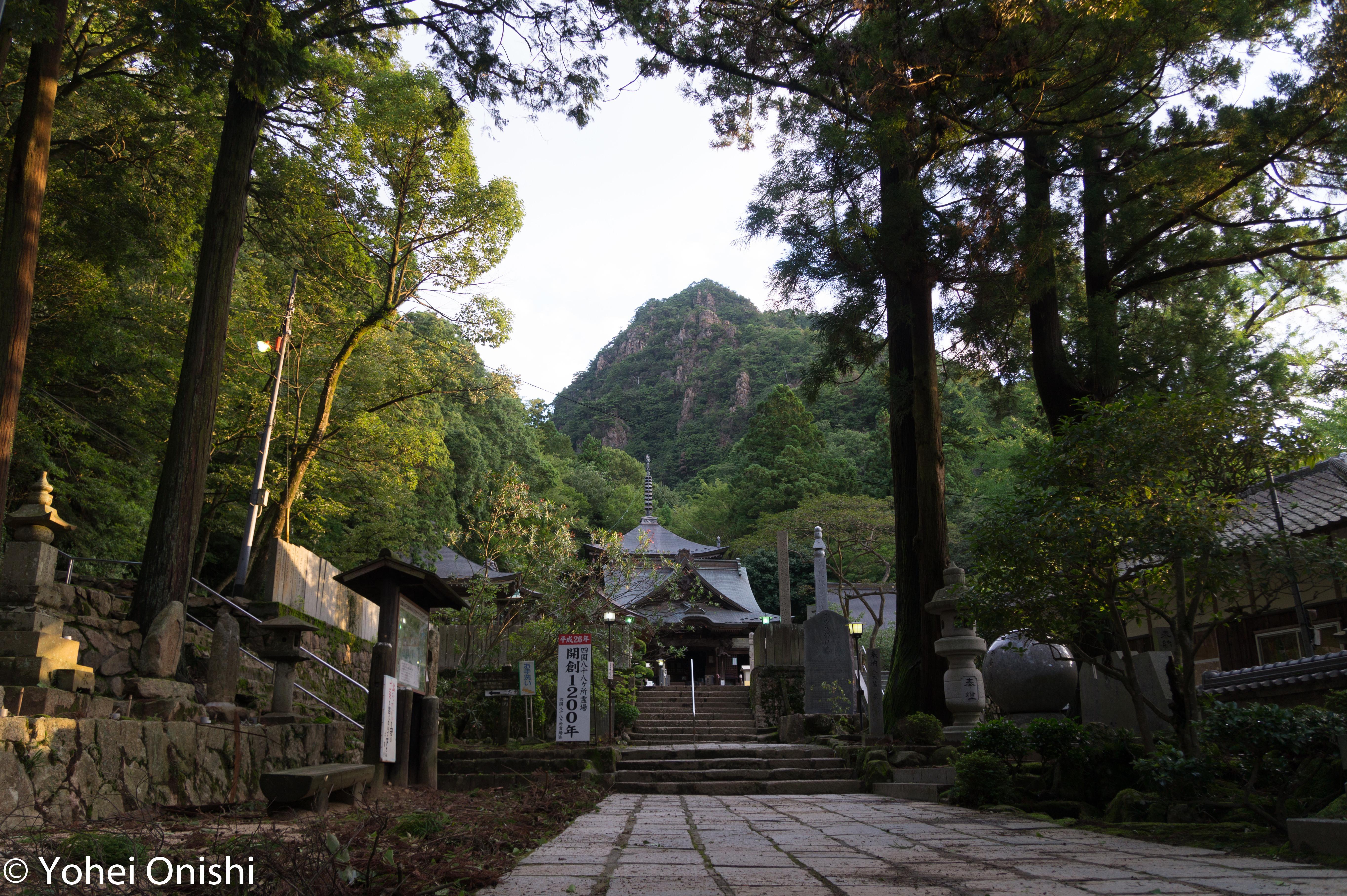 大窪寺の自然
