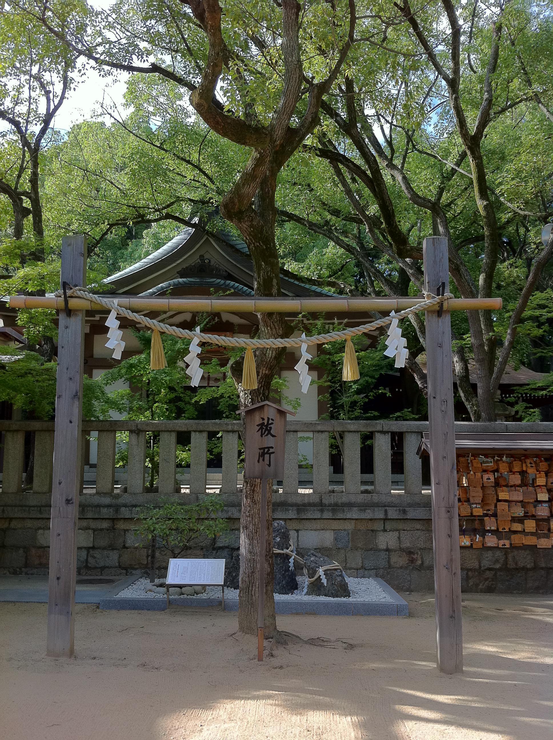 湊川神社の自然