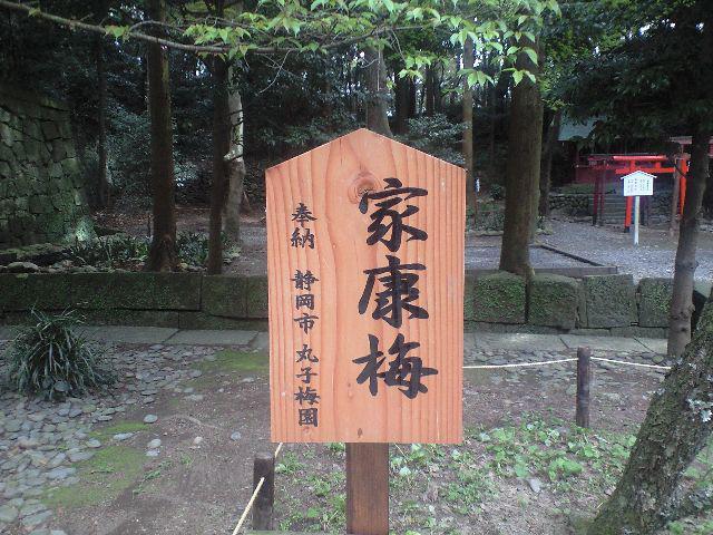 久能山東照宮の歴史