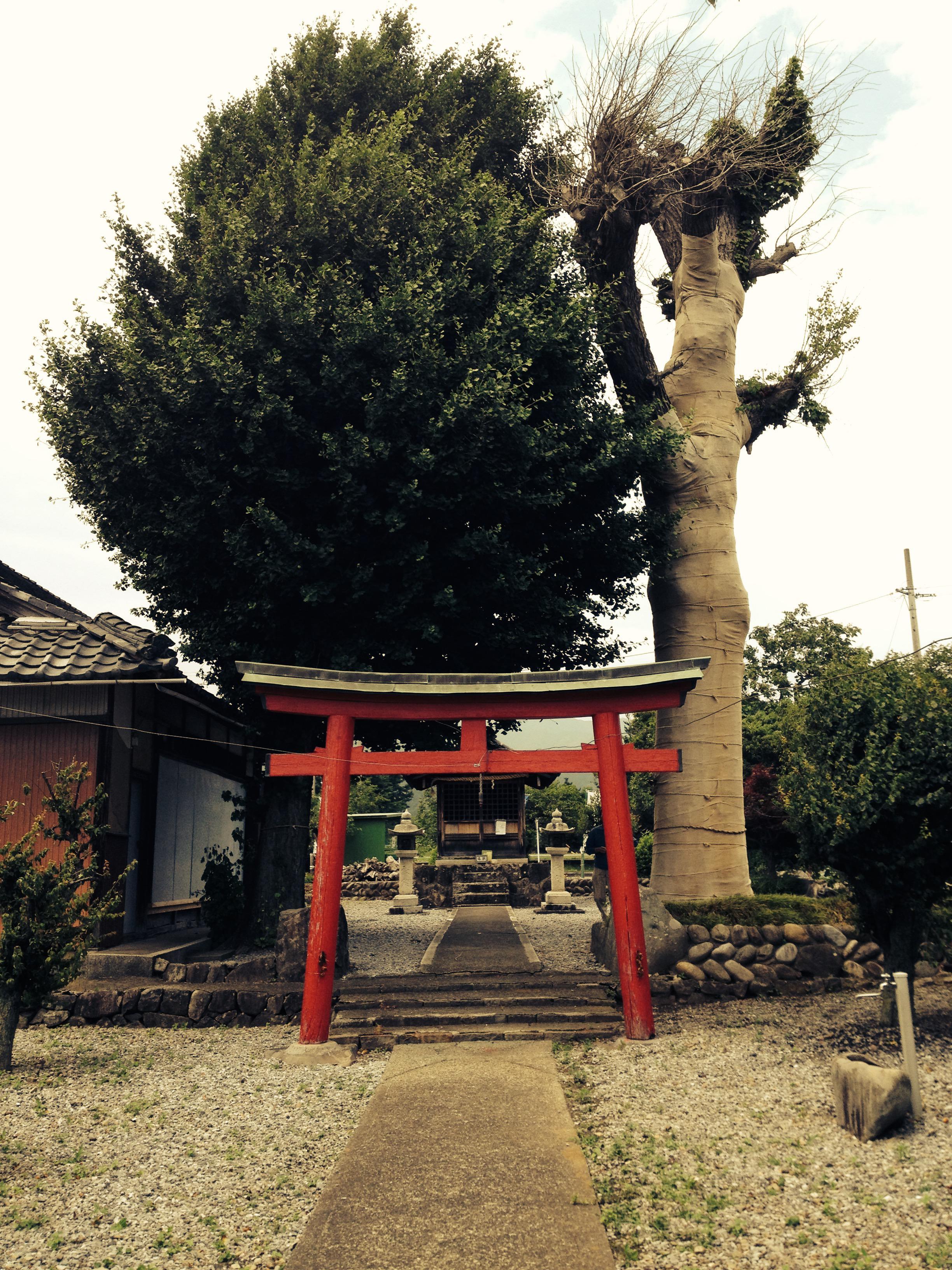 禅幢寺の鳥居
