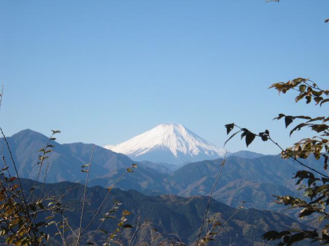 高尾山薬王院の景色