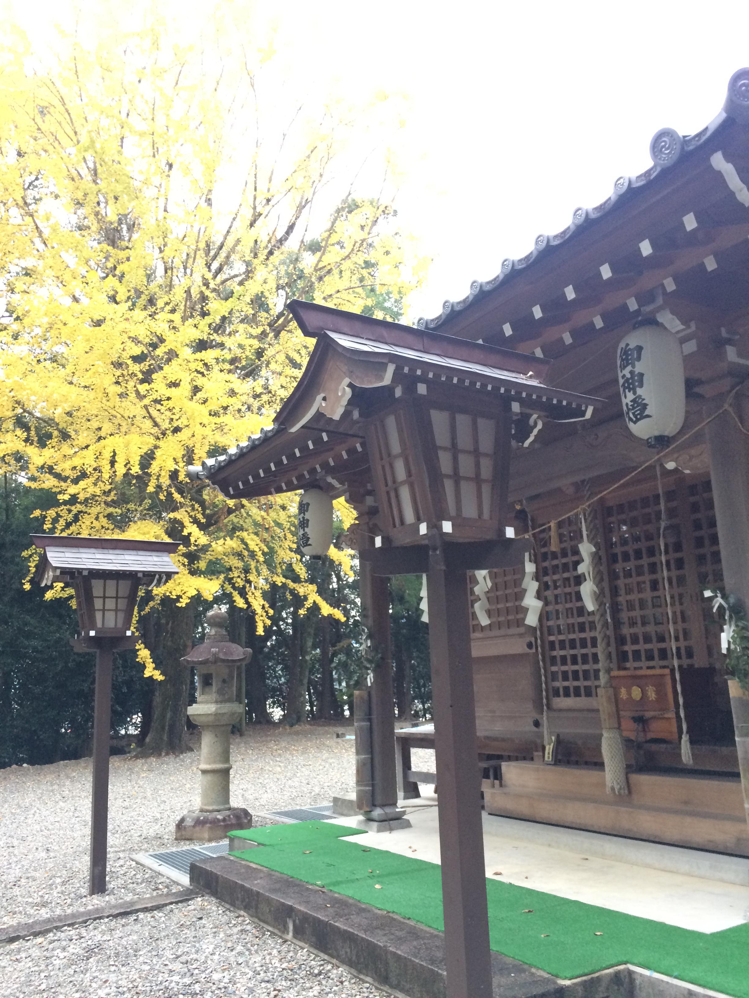 掛川神社の本殿
