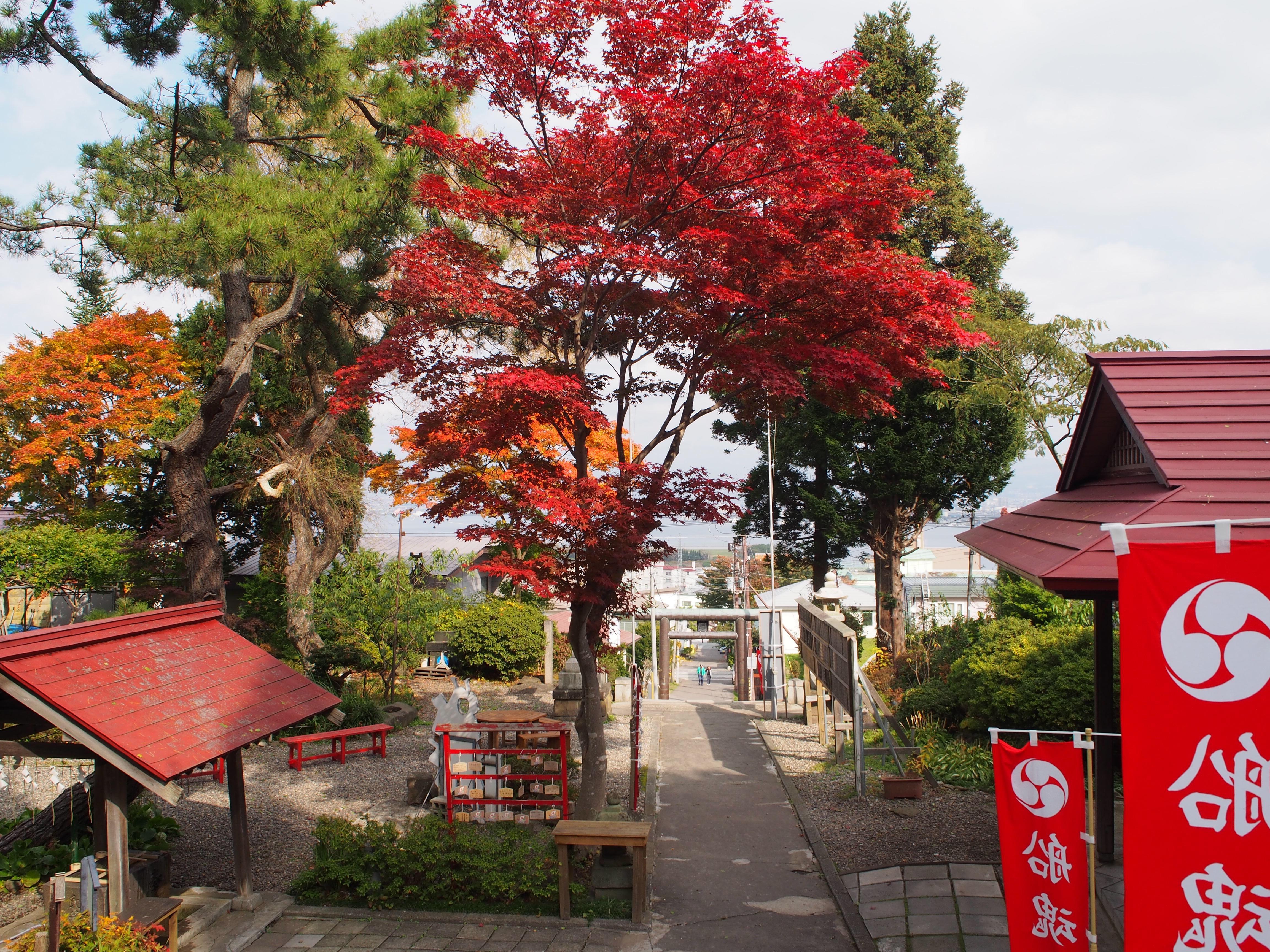 船魂神社の景色