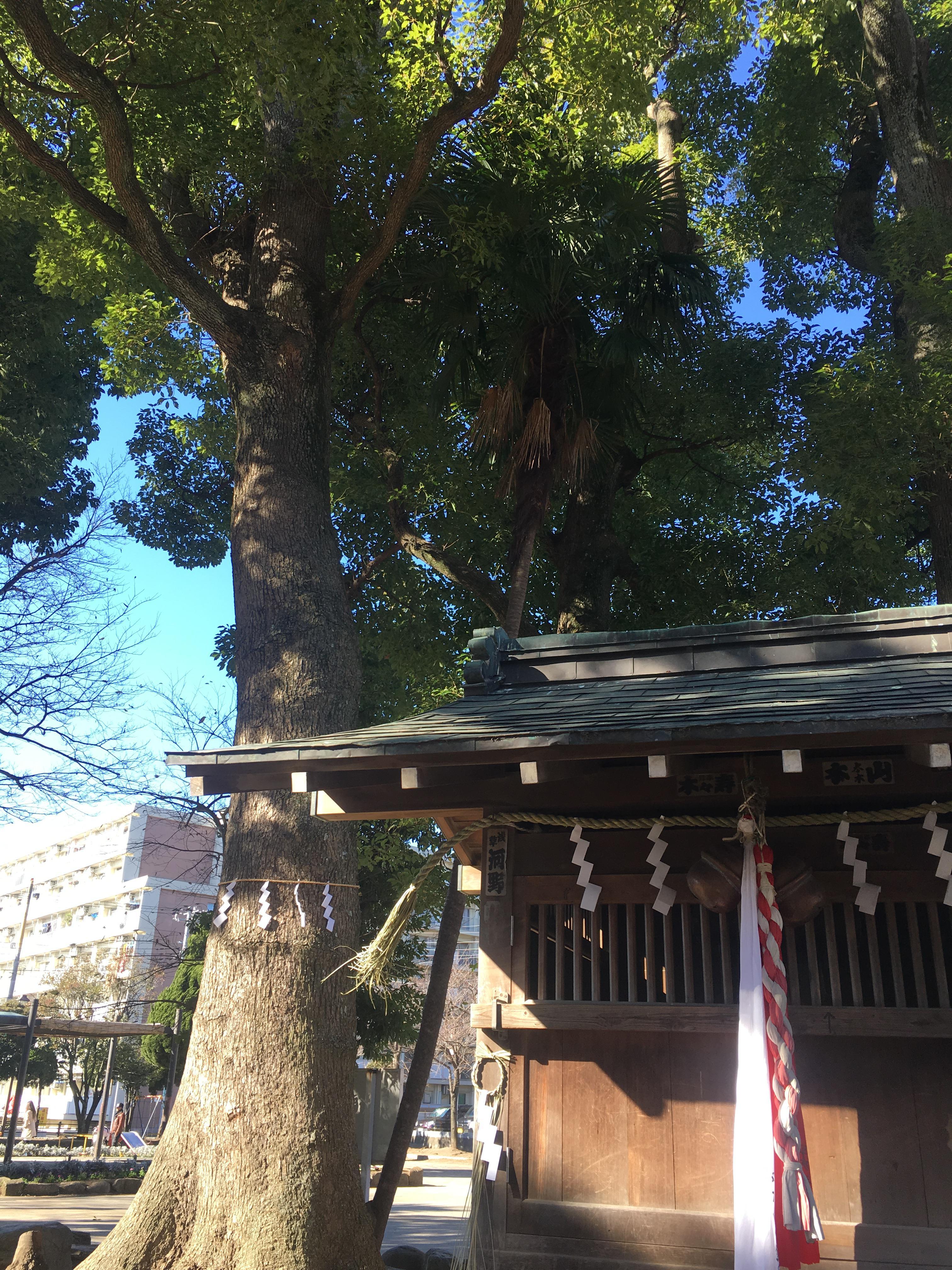 行徳弁天の森21の本殿