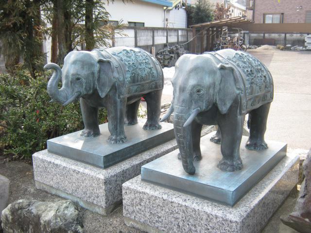 善生寺の狛犬