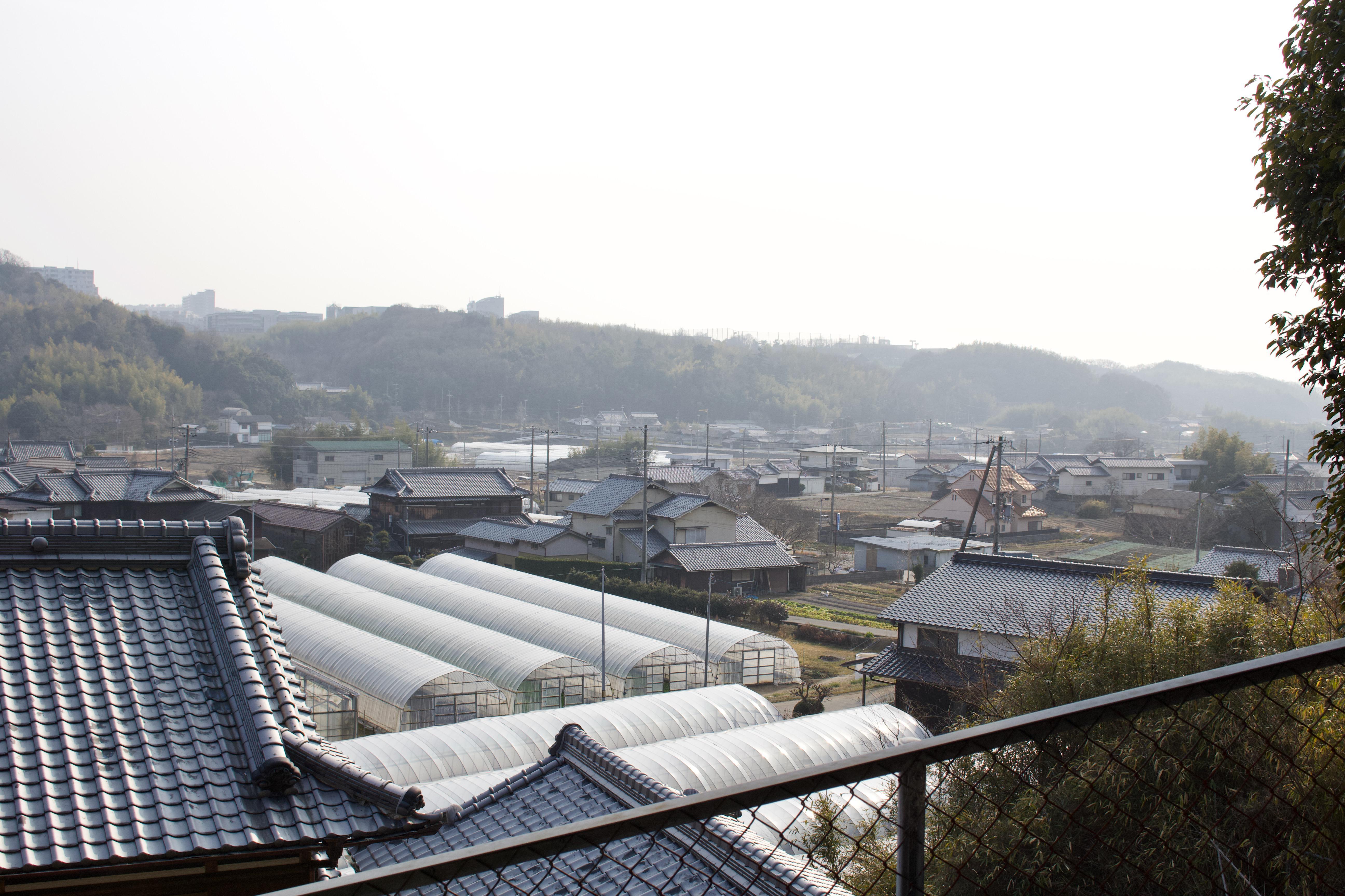 前開上大歳神社の景色