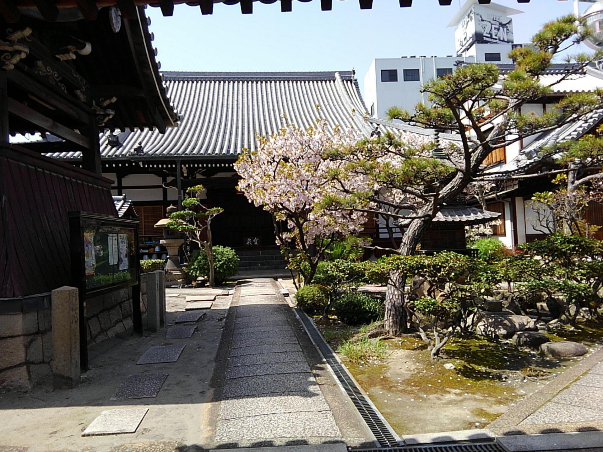 圓通寺の庭園