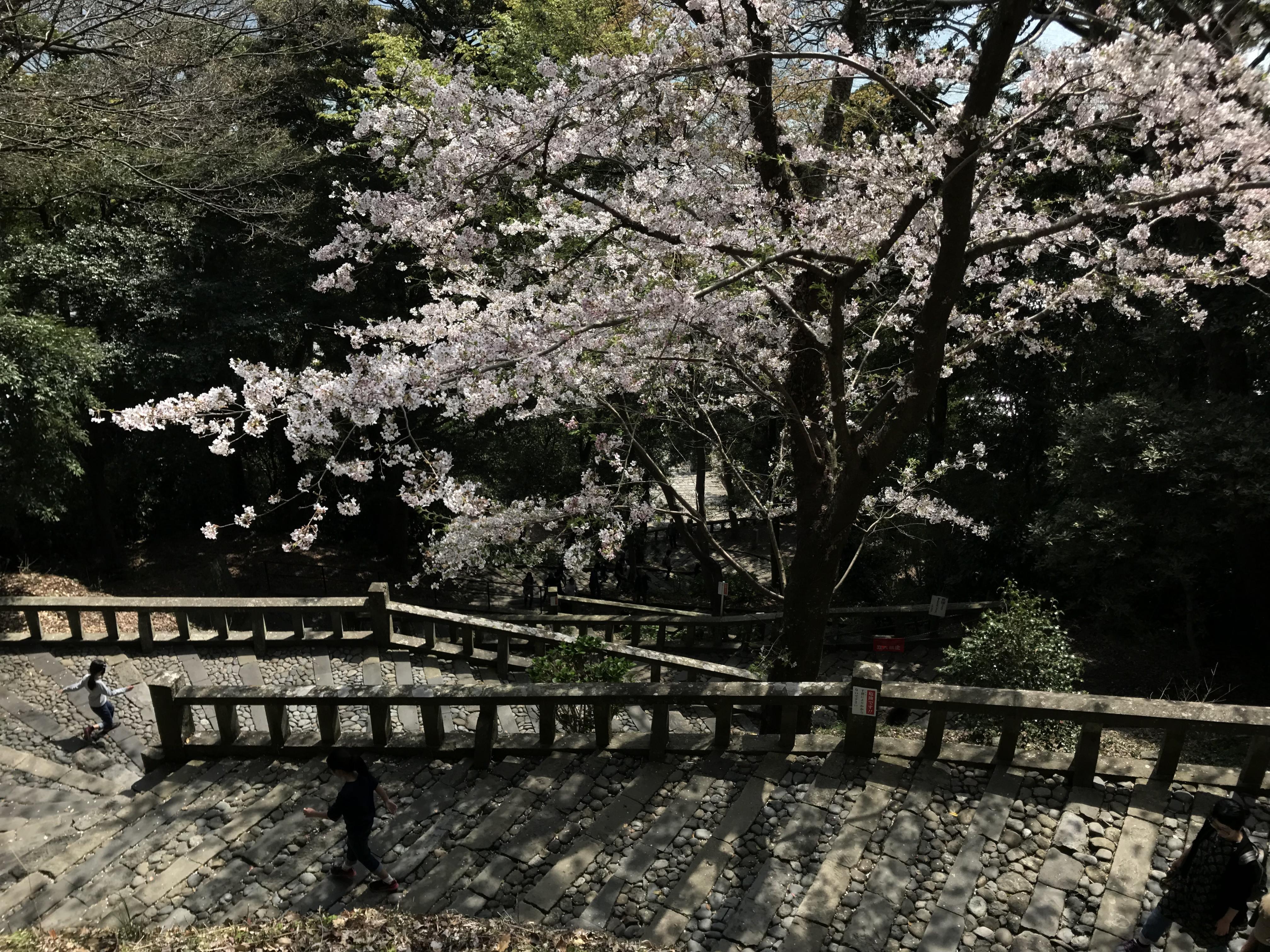 久能山東照宮の庭園