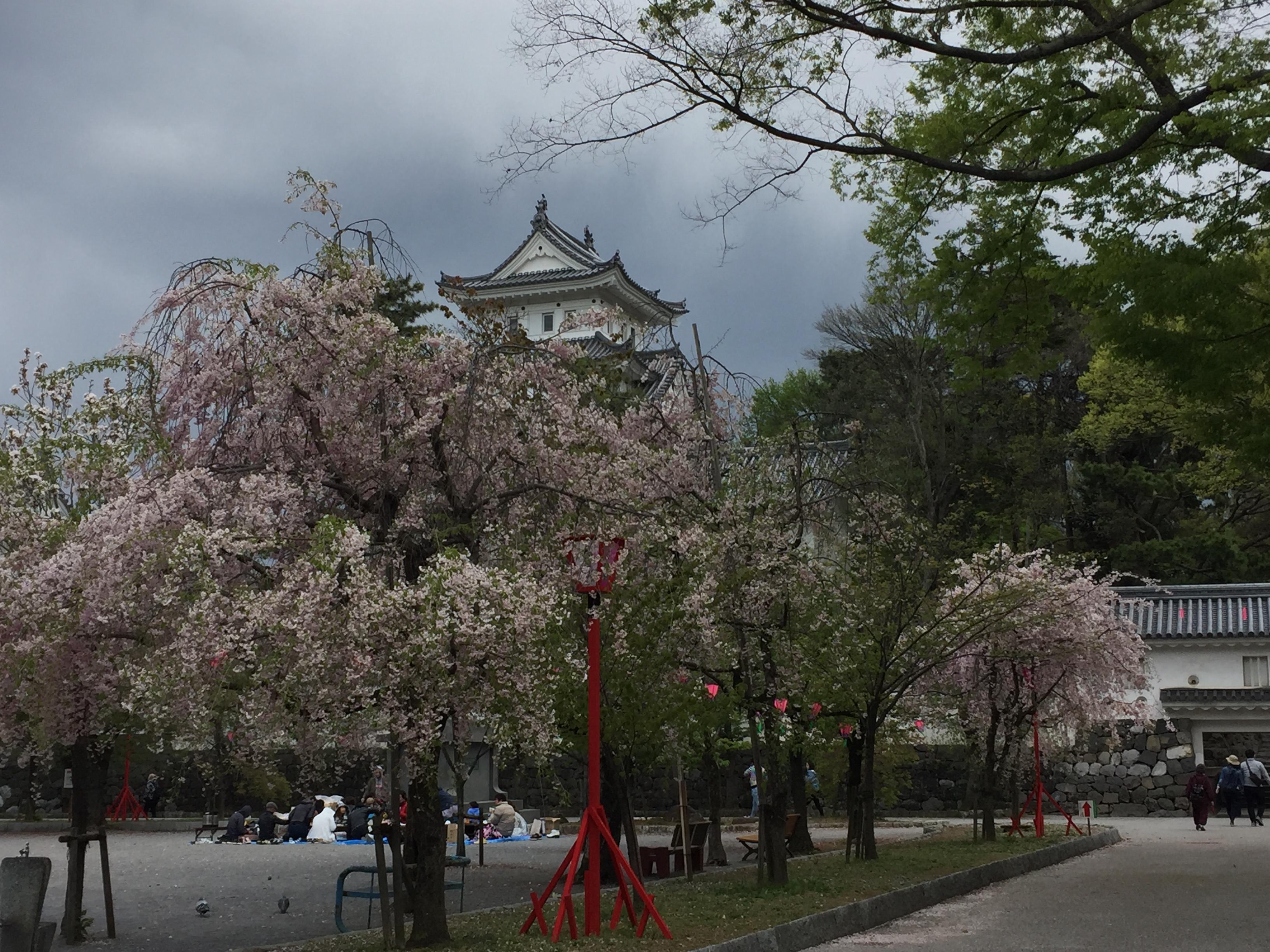 大垣八幡神社の庭園