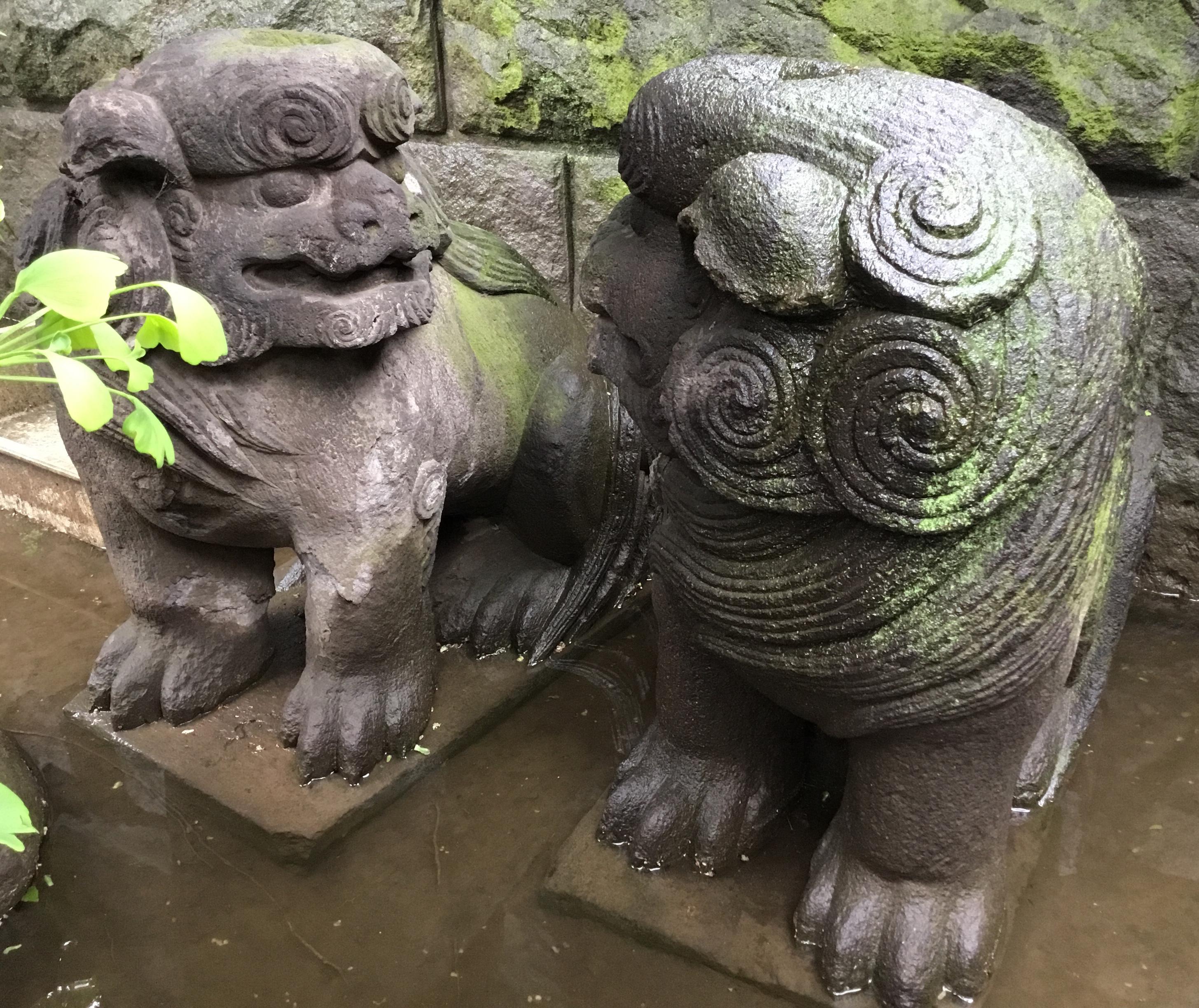 麻布氷川神社の狛犬