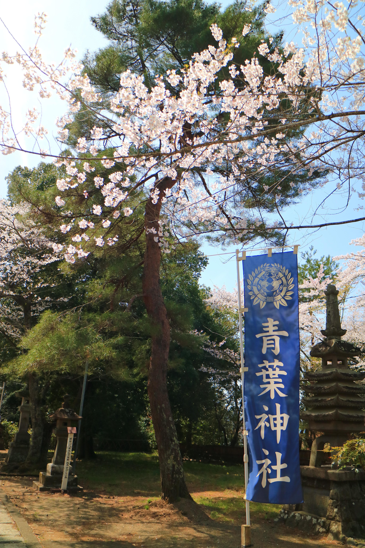 青葉神社の庭園