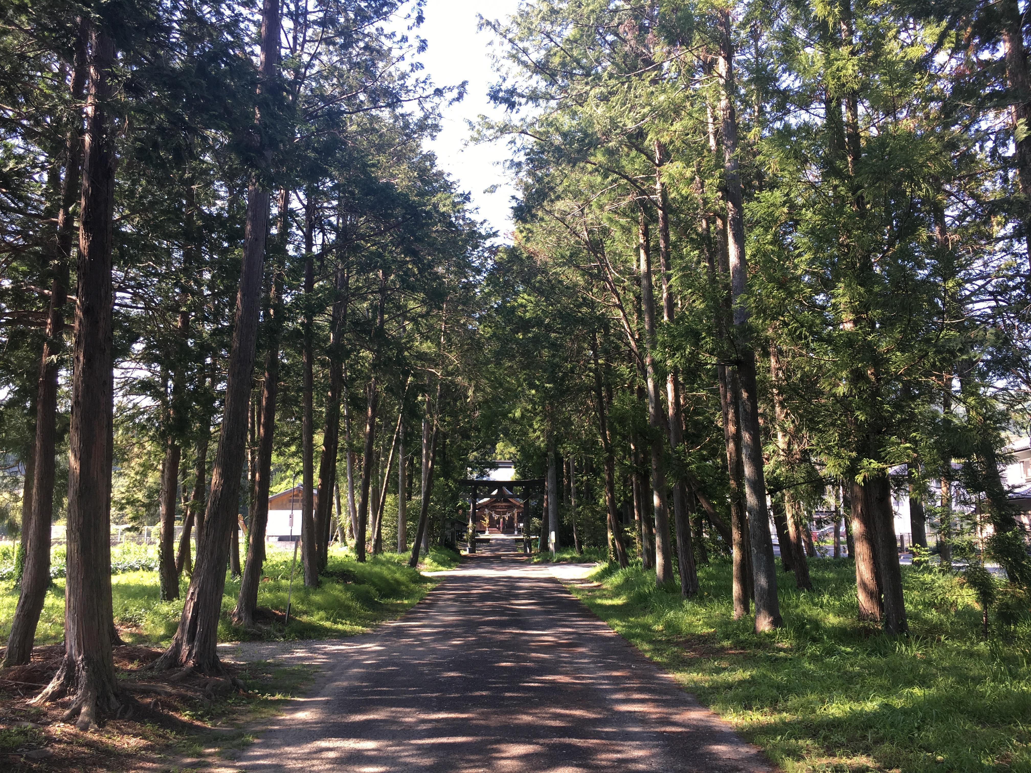 小村神社の建物その他