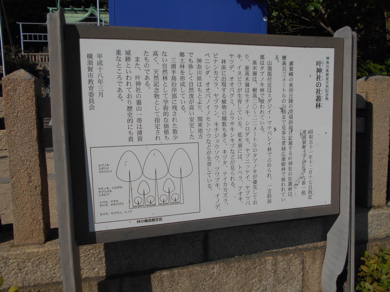 叶神社 (西叶神社)の歴史