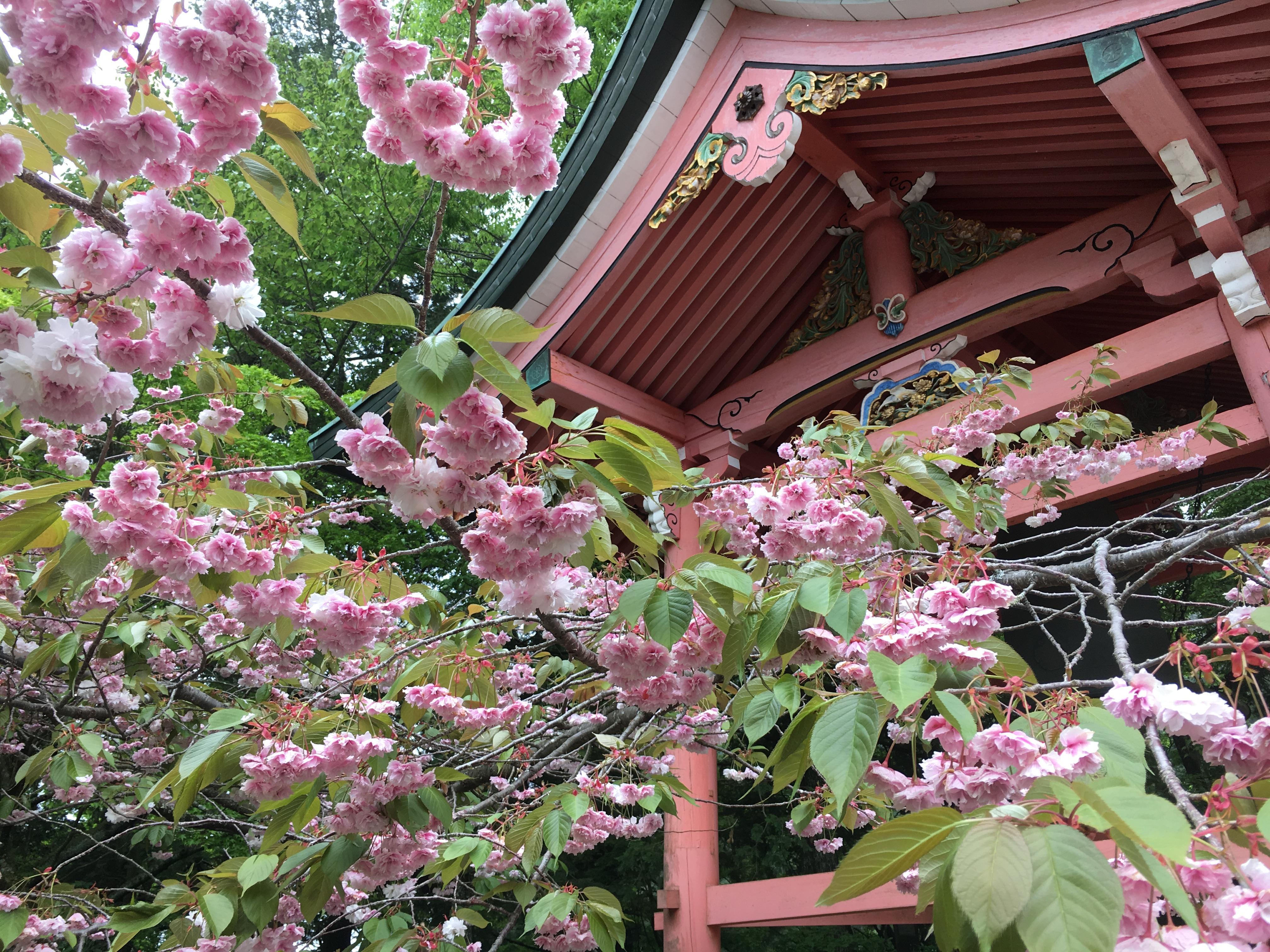 比叡山延暦寺の建物その他