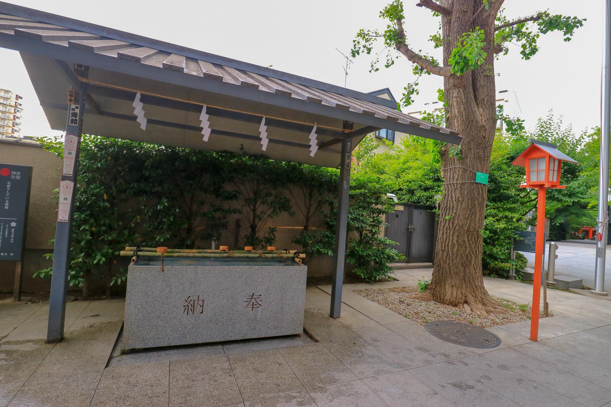 赤城神社の手水