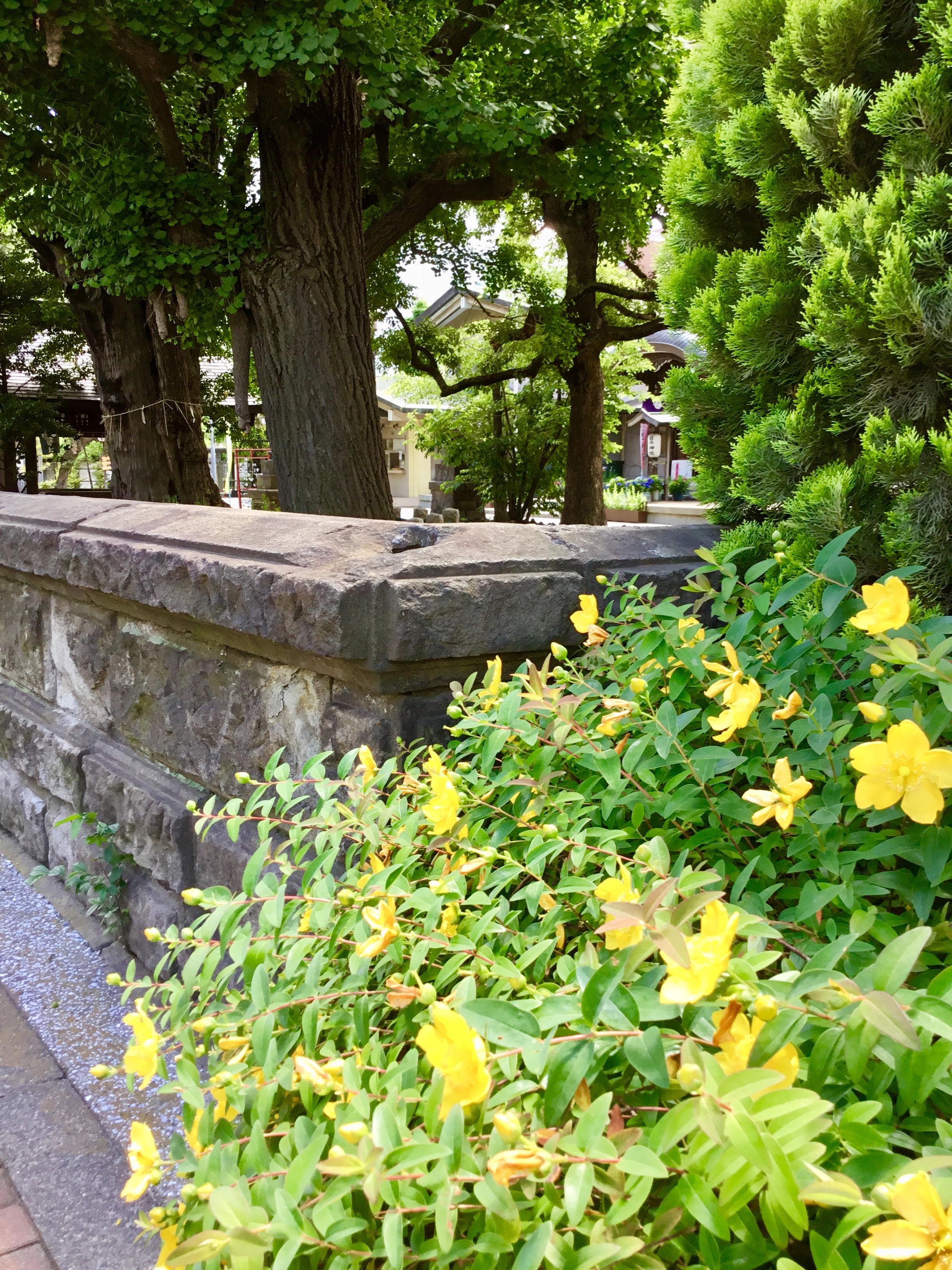 磐井神社の周辺