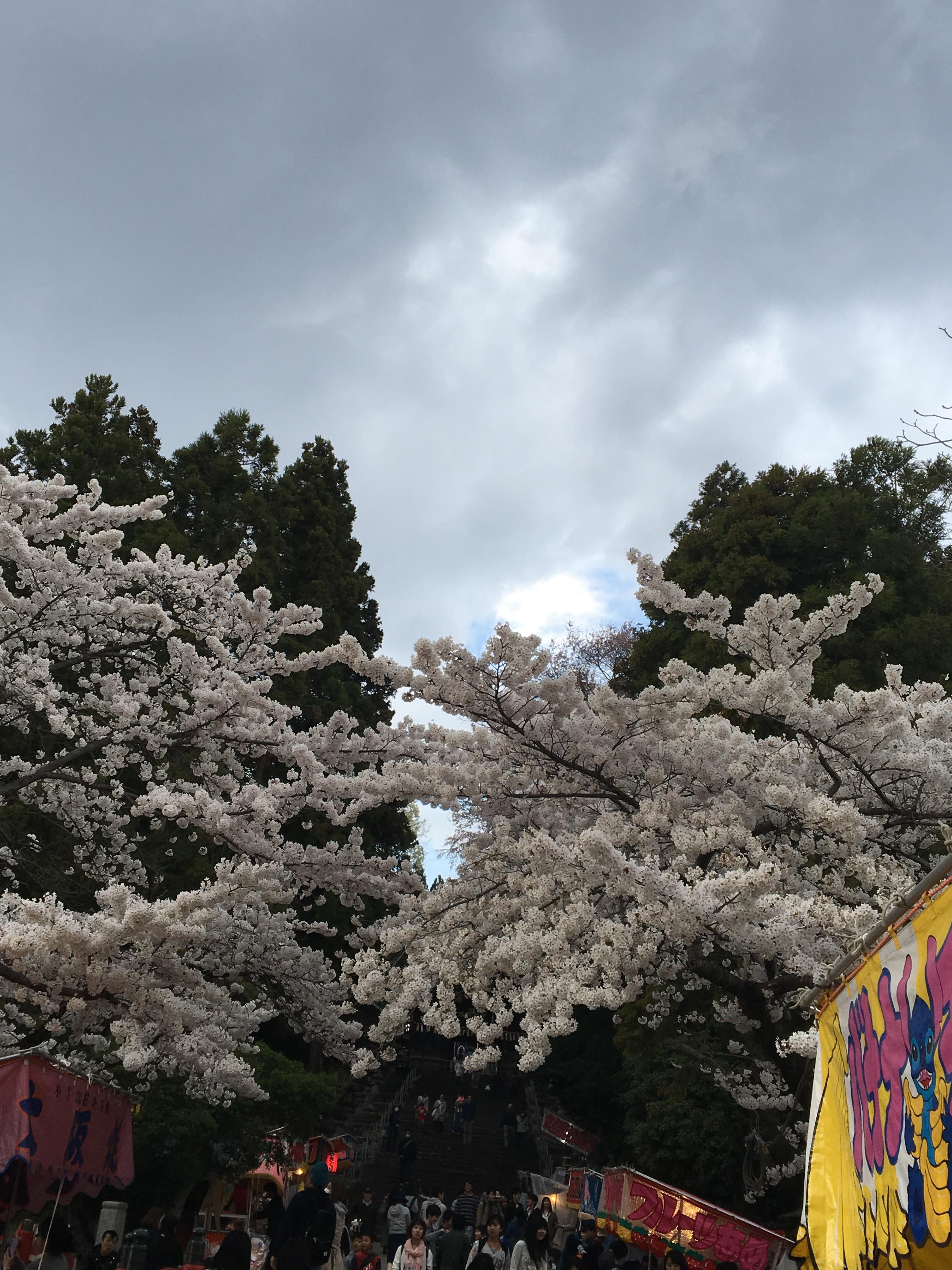 仙台東照宮のお祭り