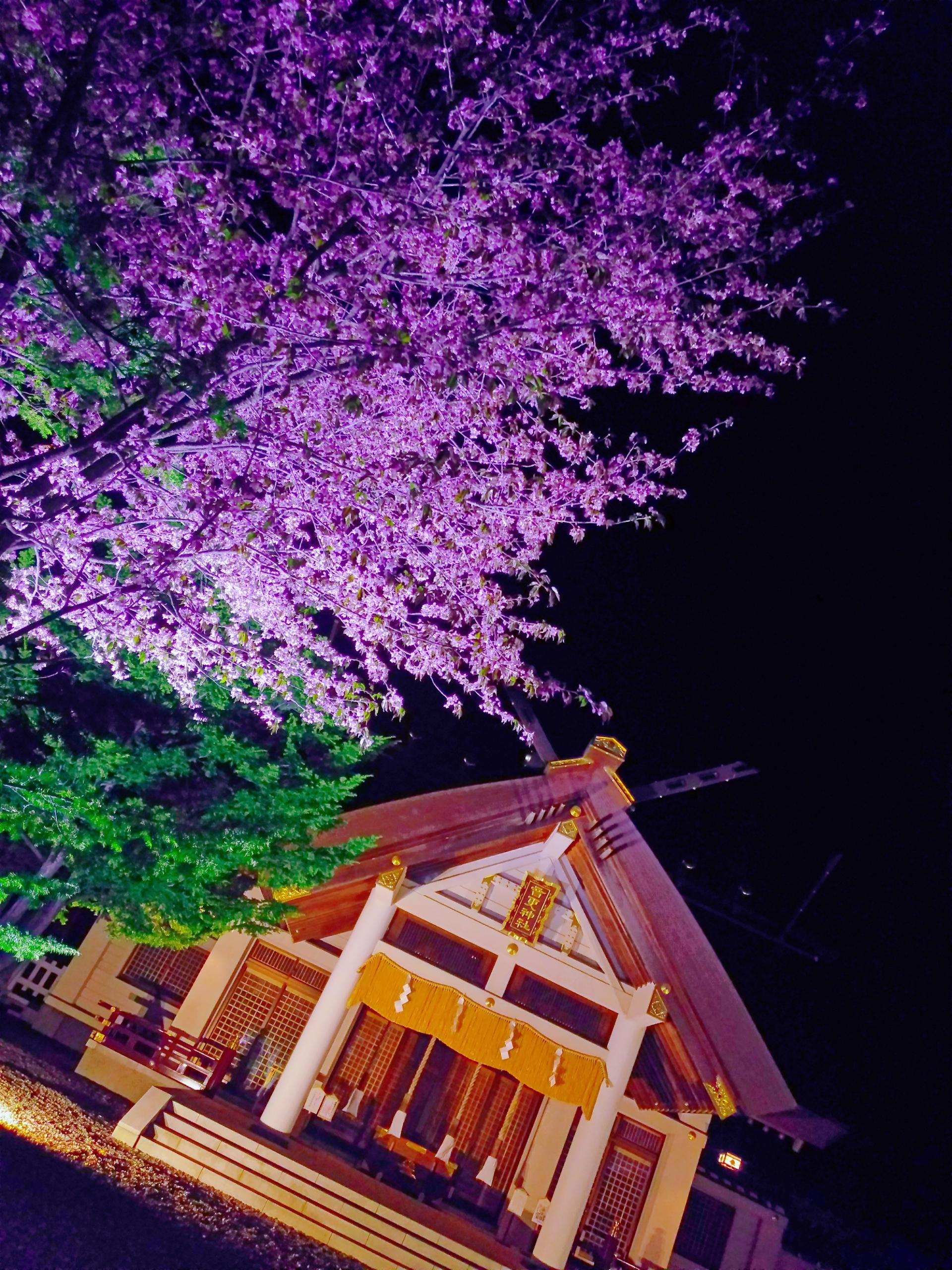 音更神社(北海道)