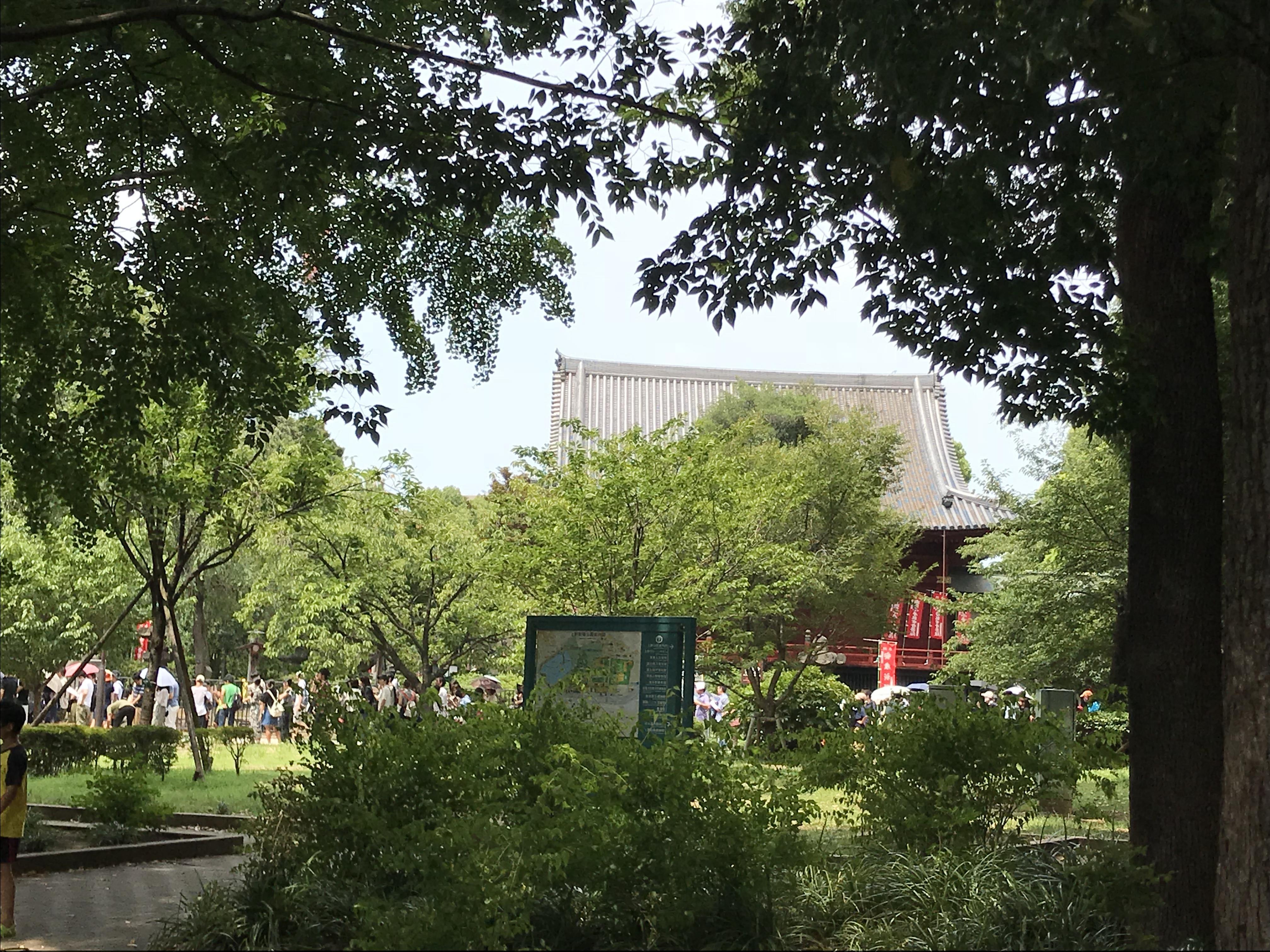 寛永寺の庭園