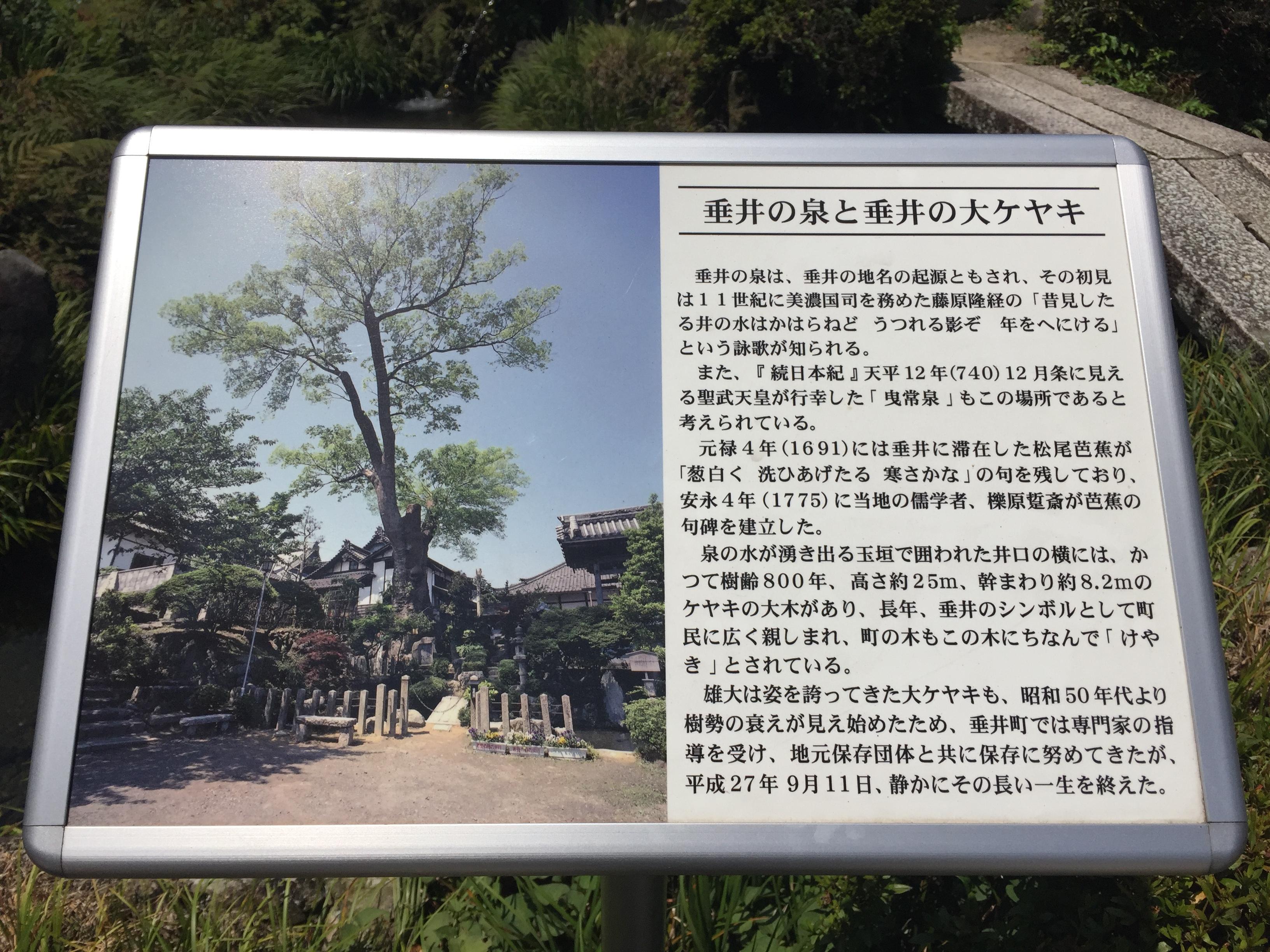 専精寺の歴史