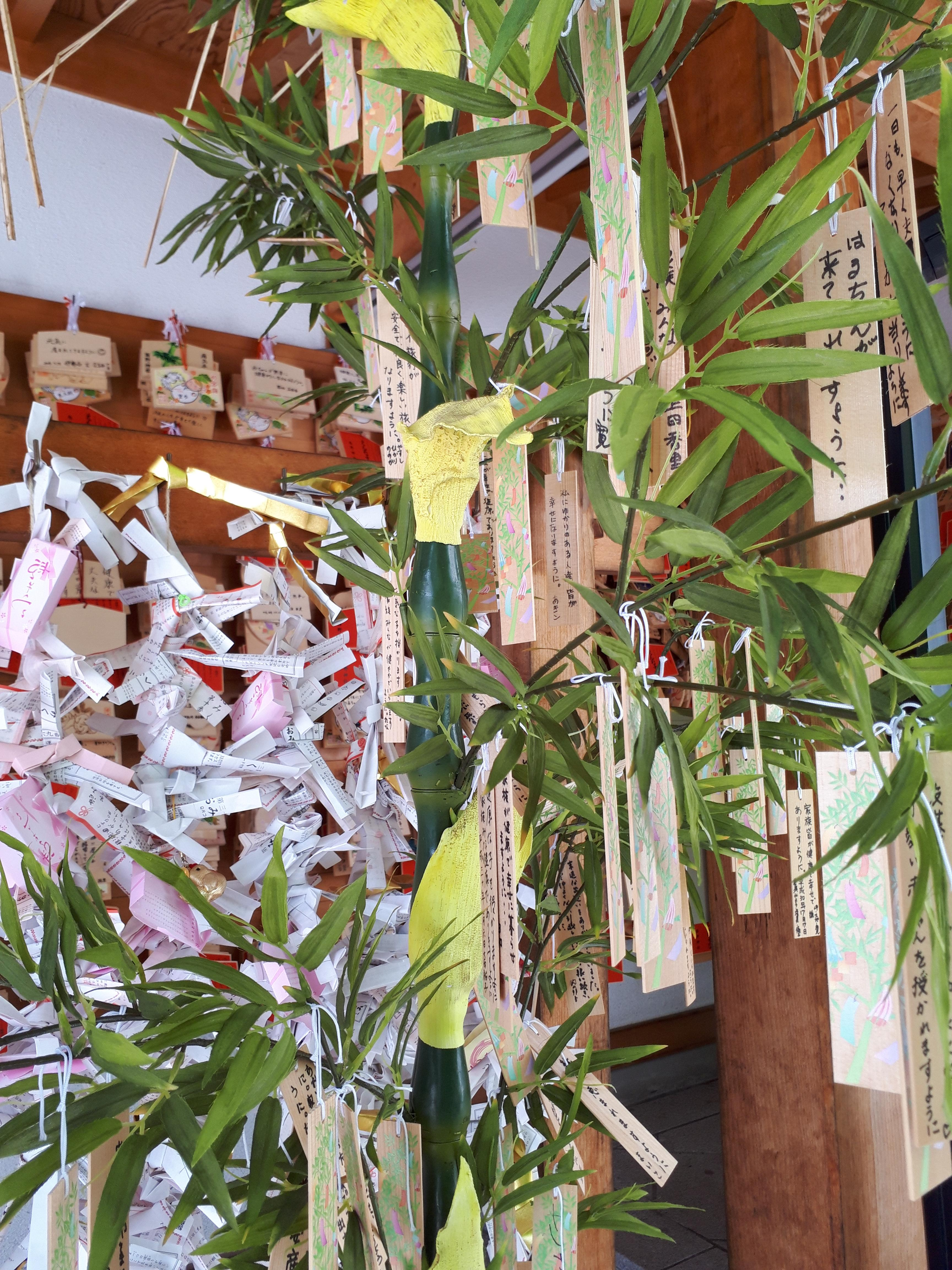 西野神社の体験その他