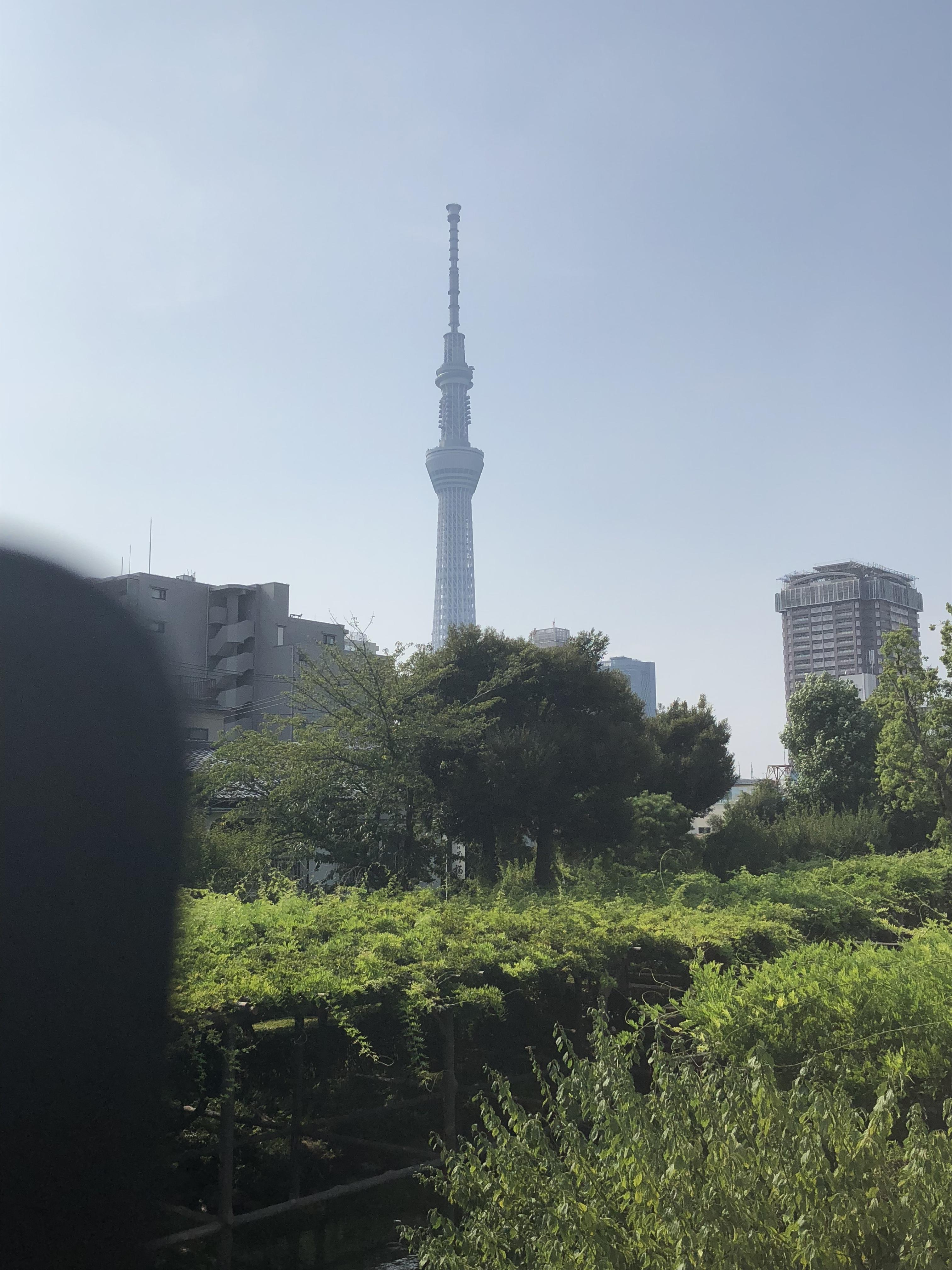 亀戸天神社の周辺
