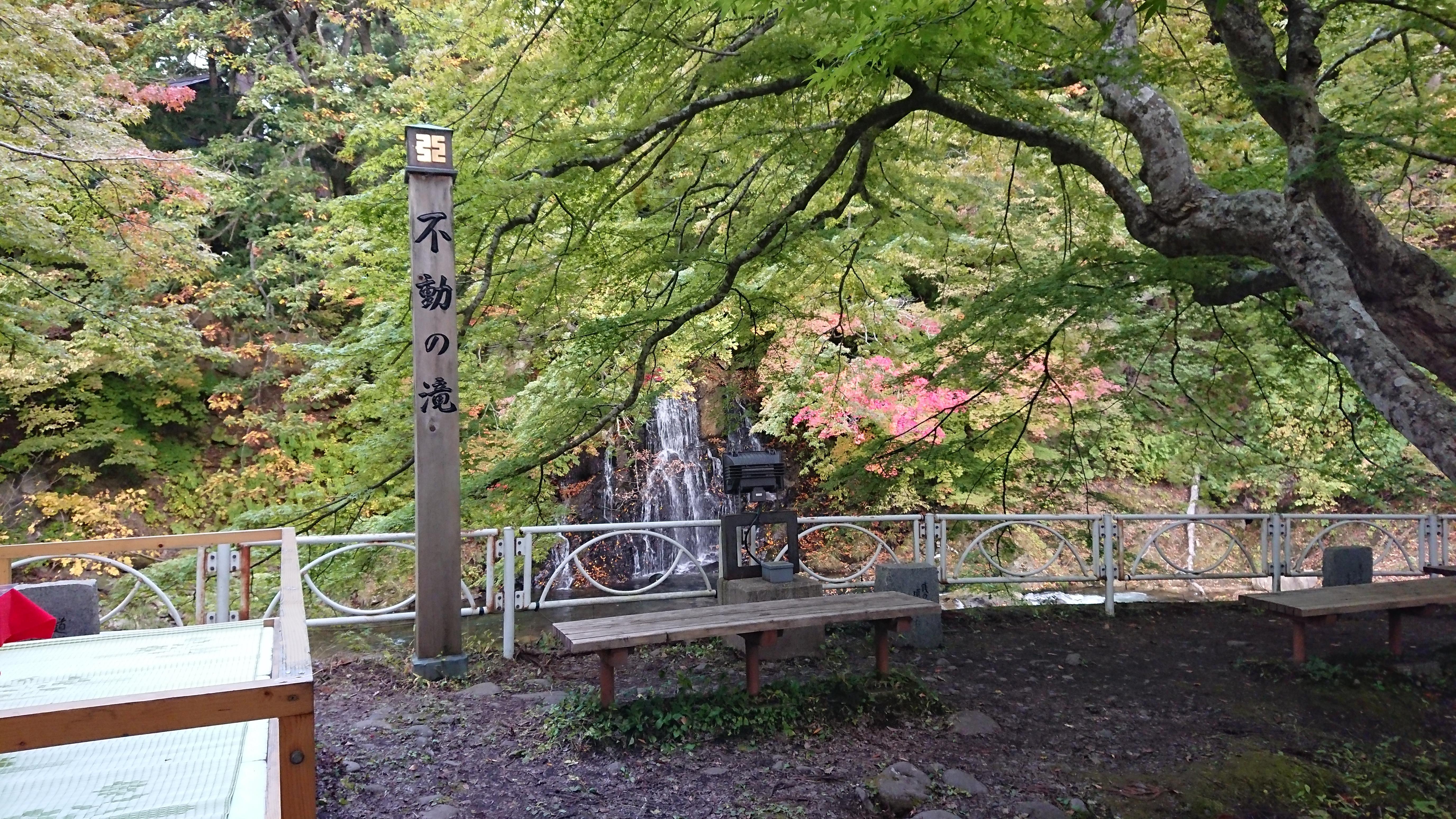 中野神社の自然