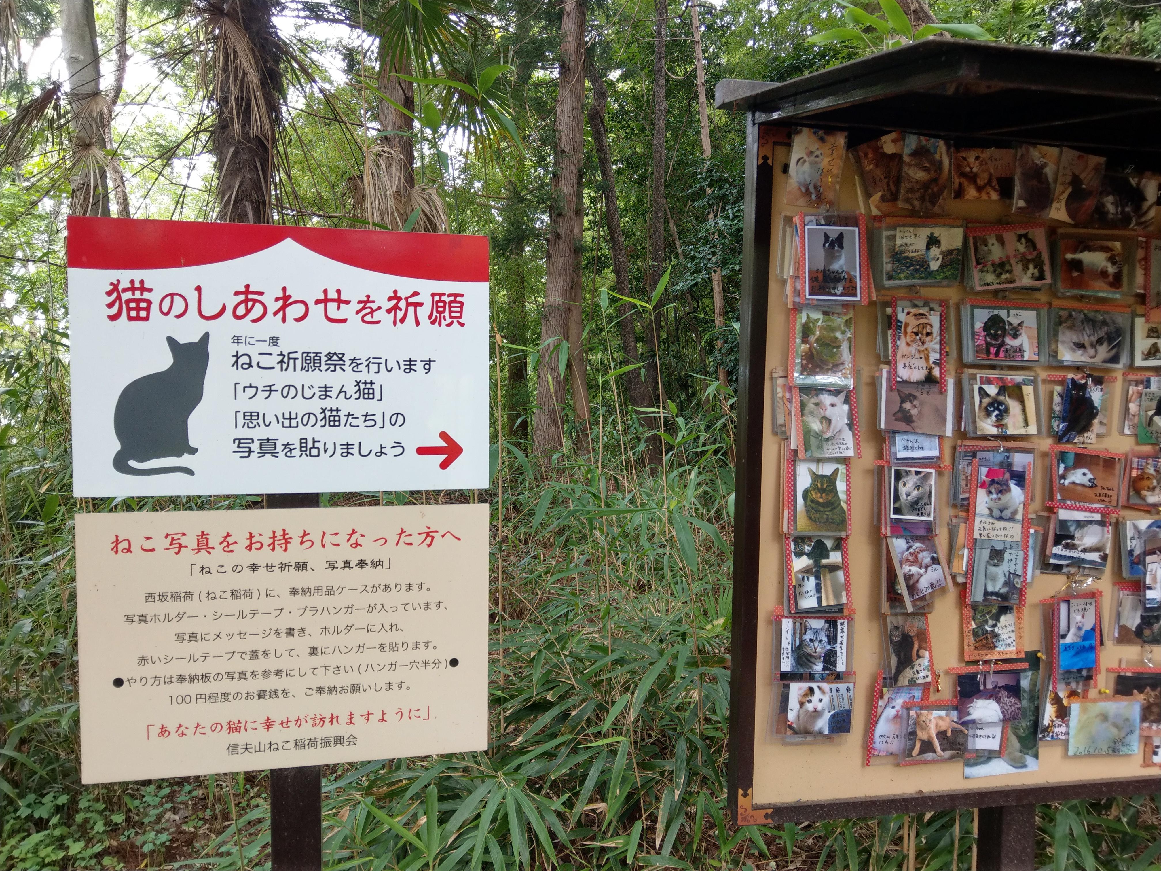 西坂ねこ稲荷神社の建物その他